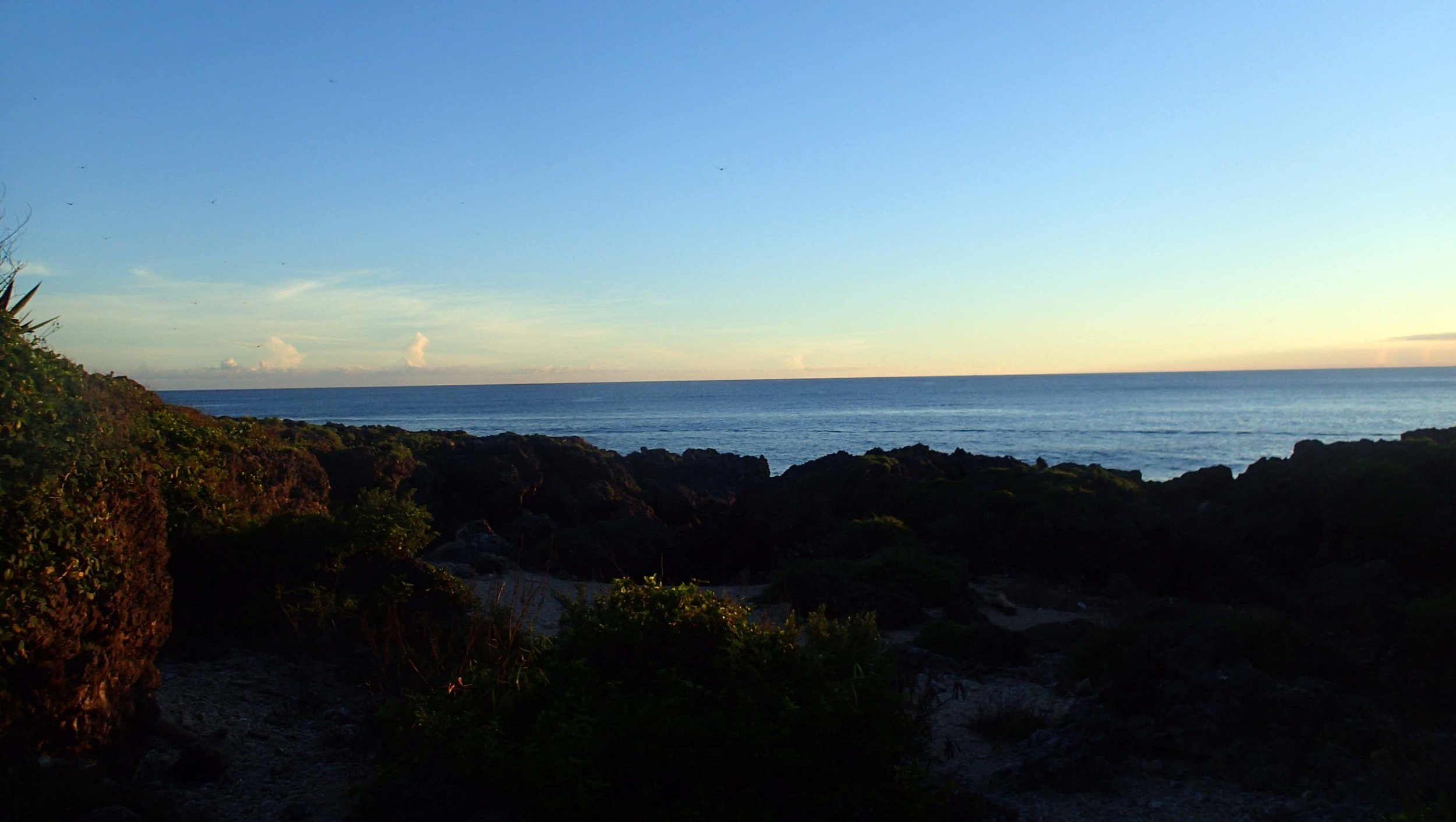 Little Bear Cove at sunset.jpg