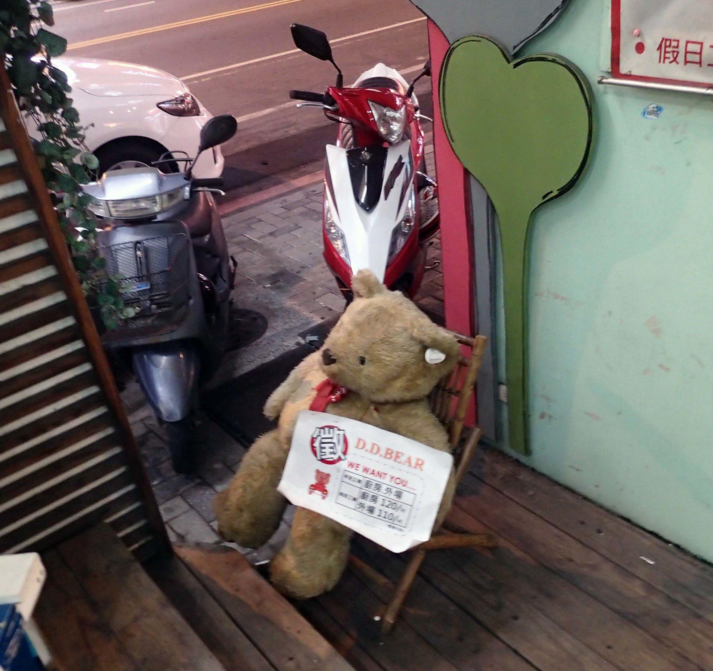 DD Bear.jpg