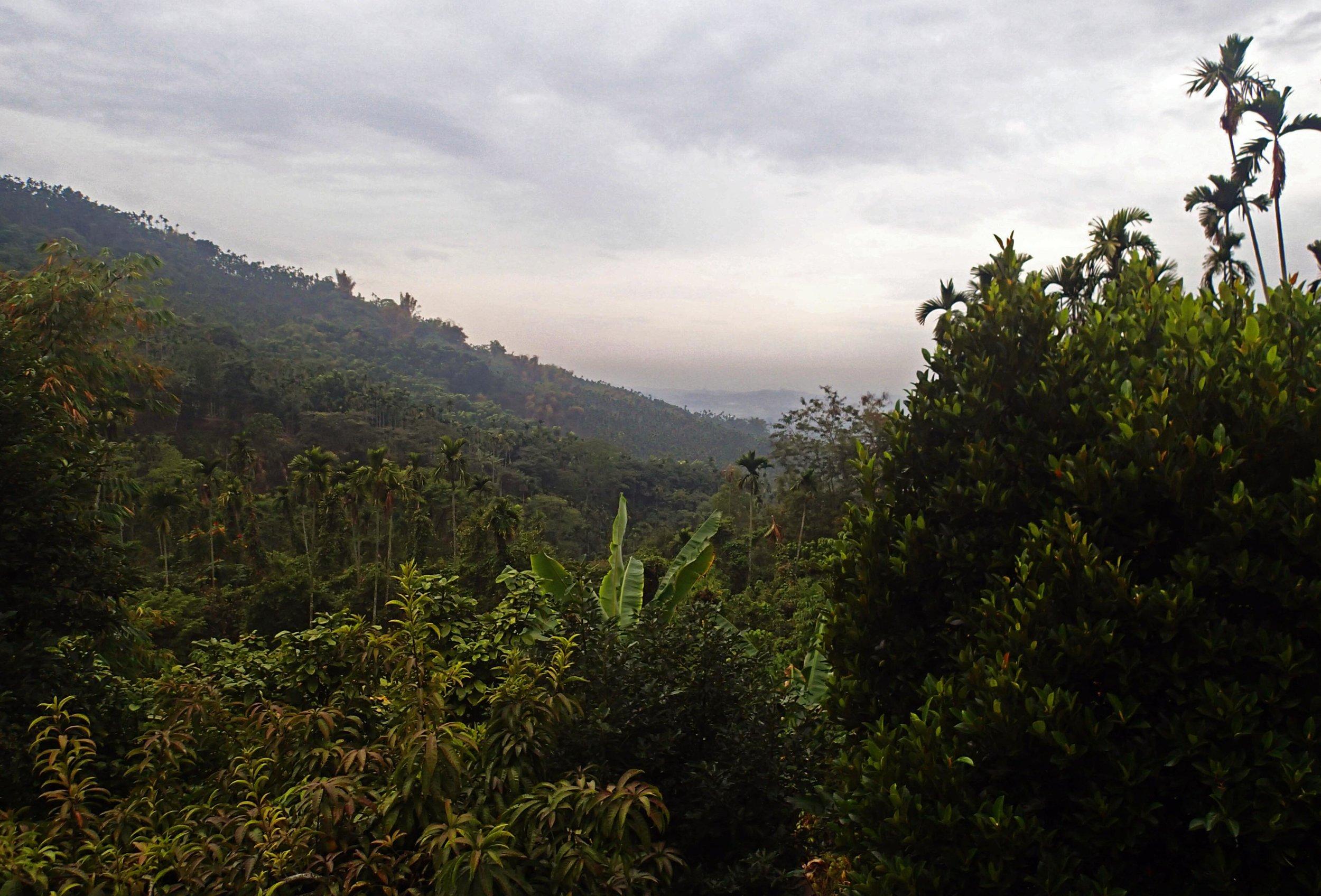 mountains behind Chiayi.jpg