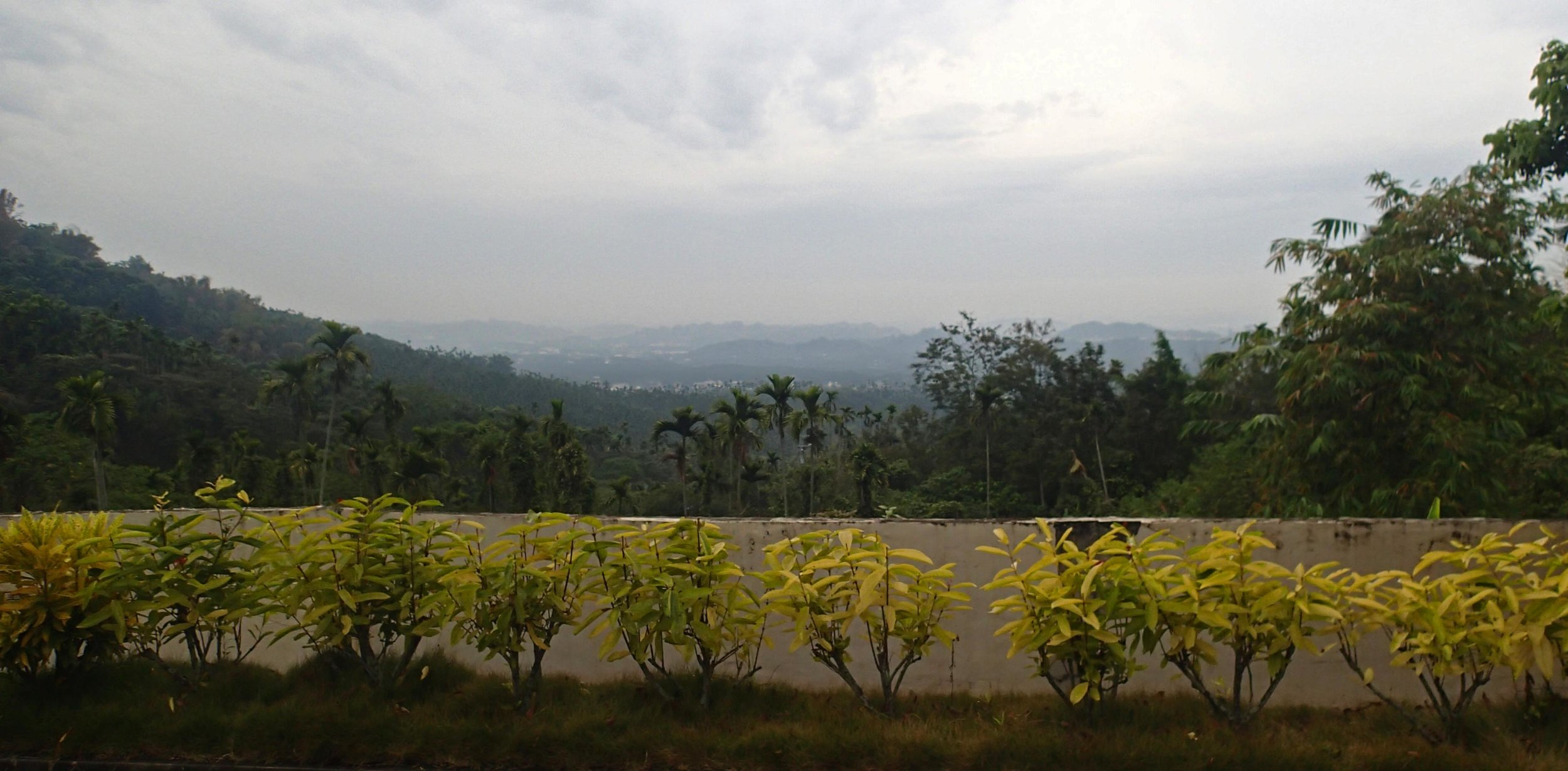 view from the Buddhist temple Chiayi.jpg