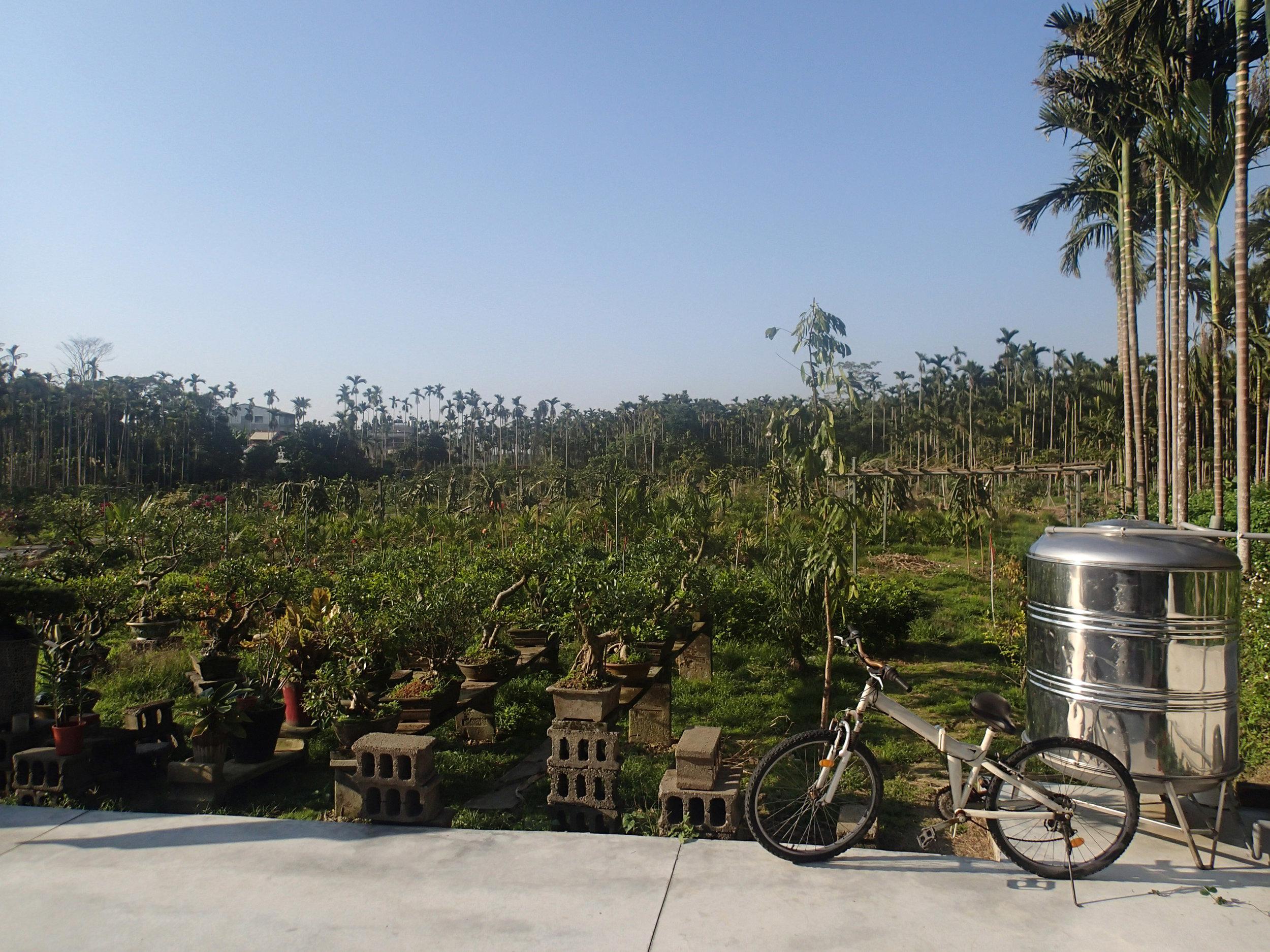 Tsai farm.jpg