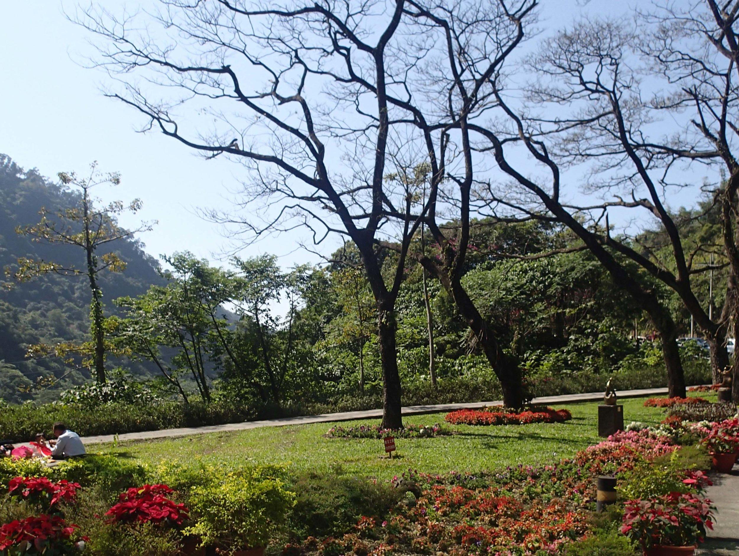Tsengwen Reservoir visitor center.jpg