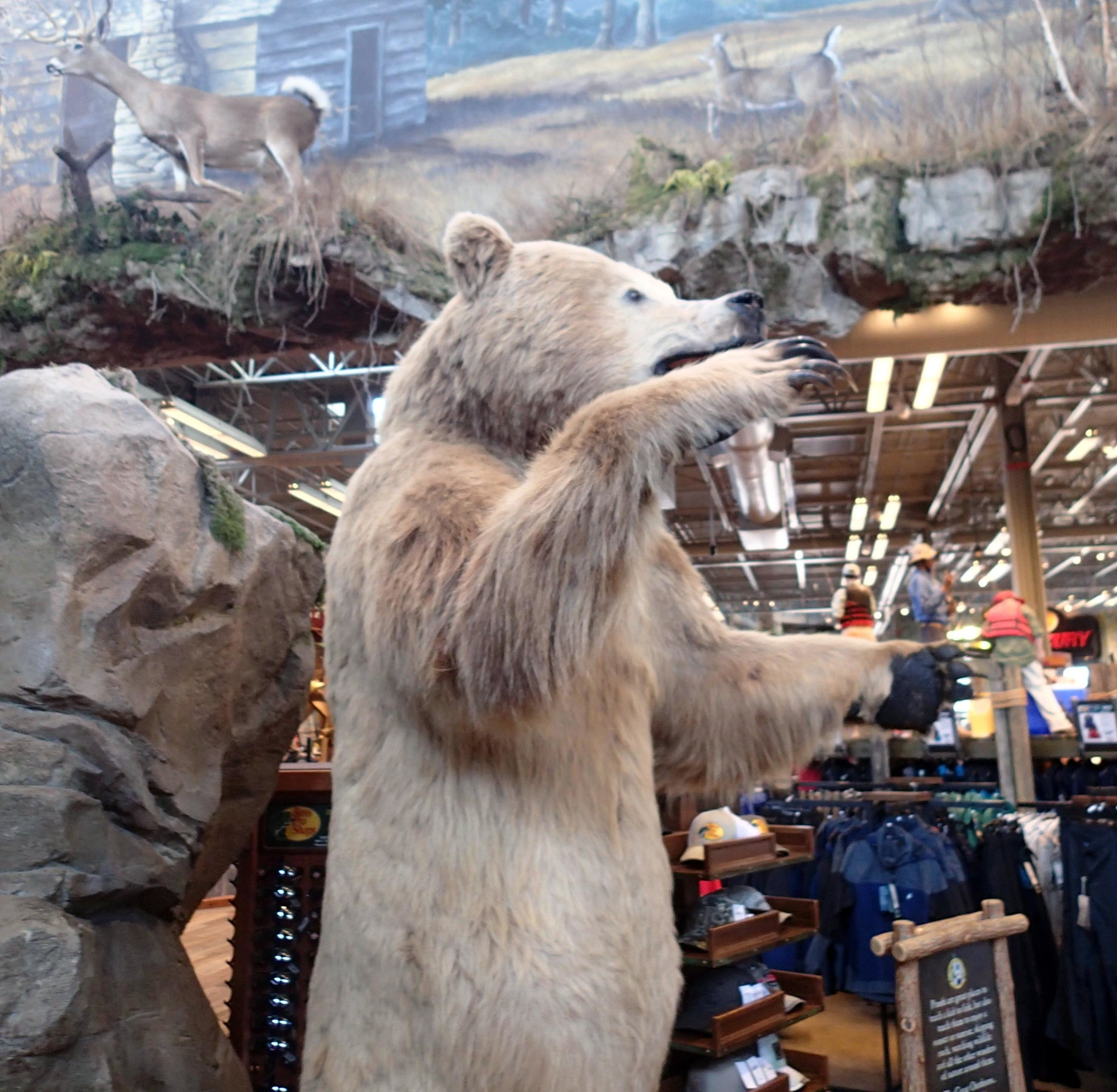 Grizzley at Bass Pro.jpg