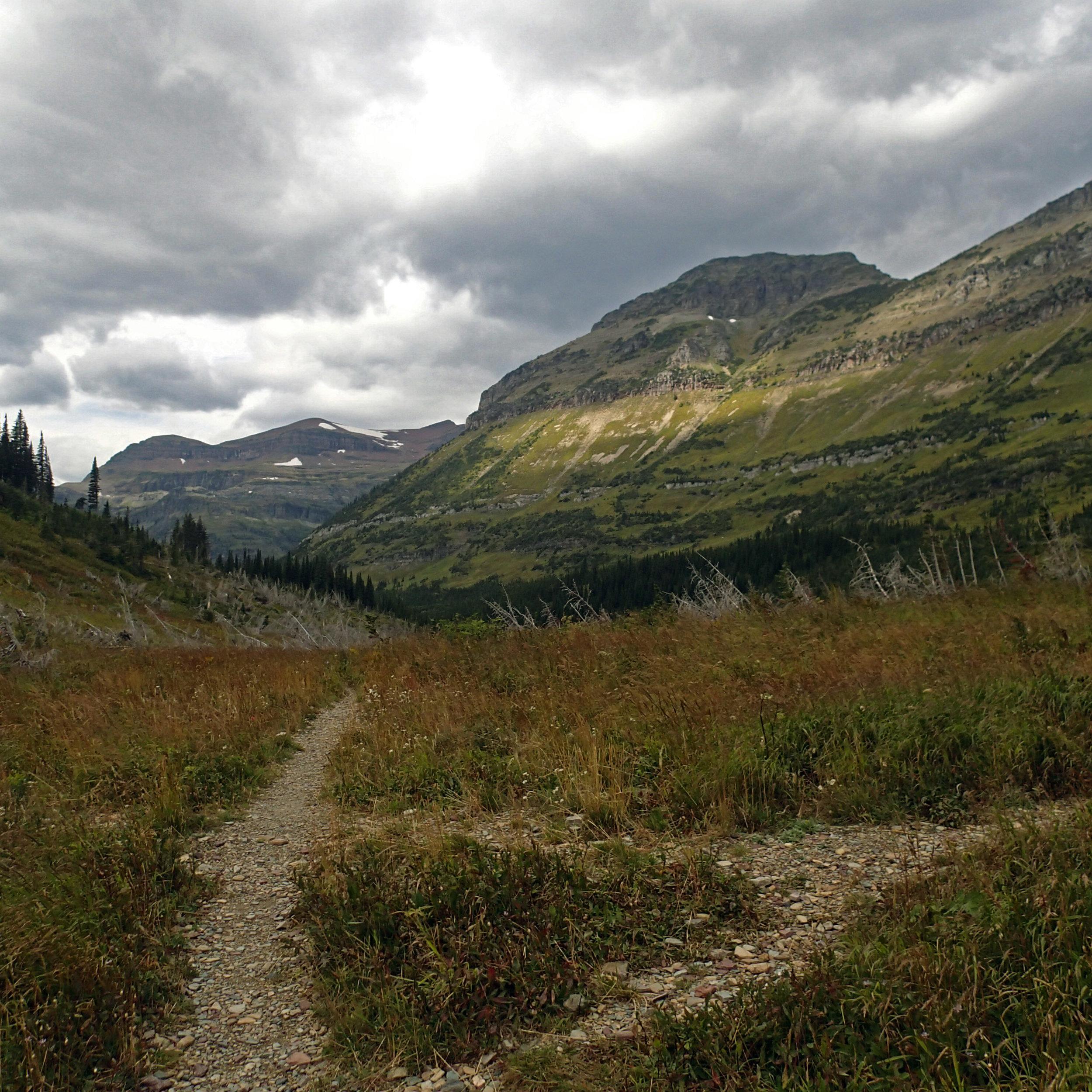 Brown Pass.jpg