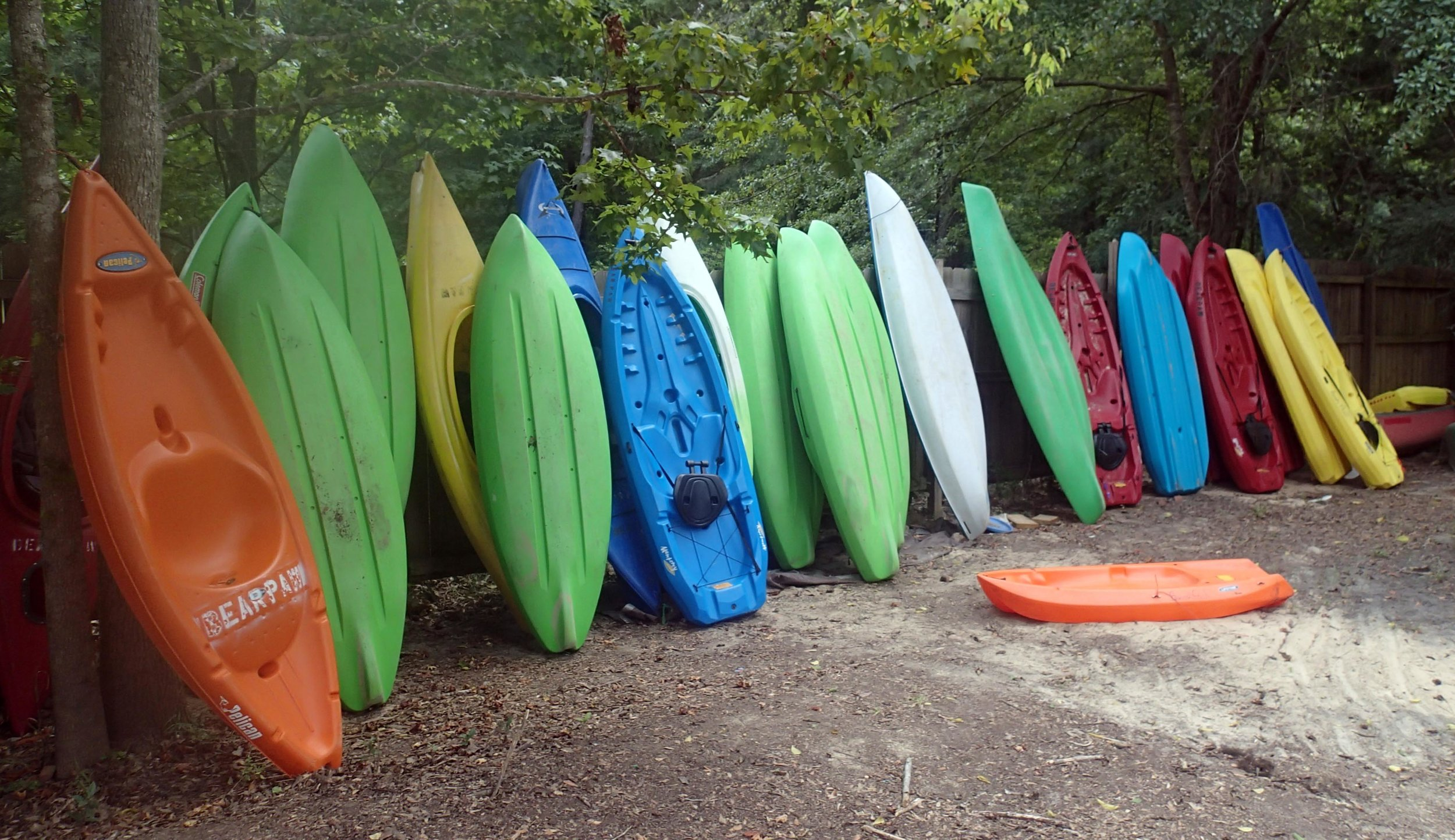 Bear Paw's canoes.jpg