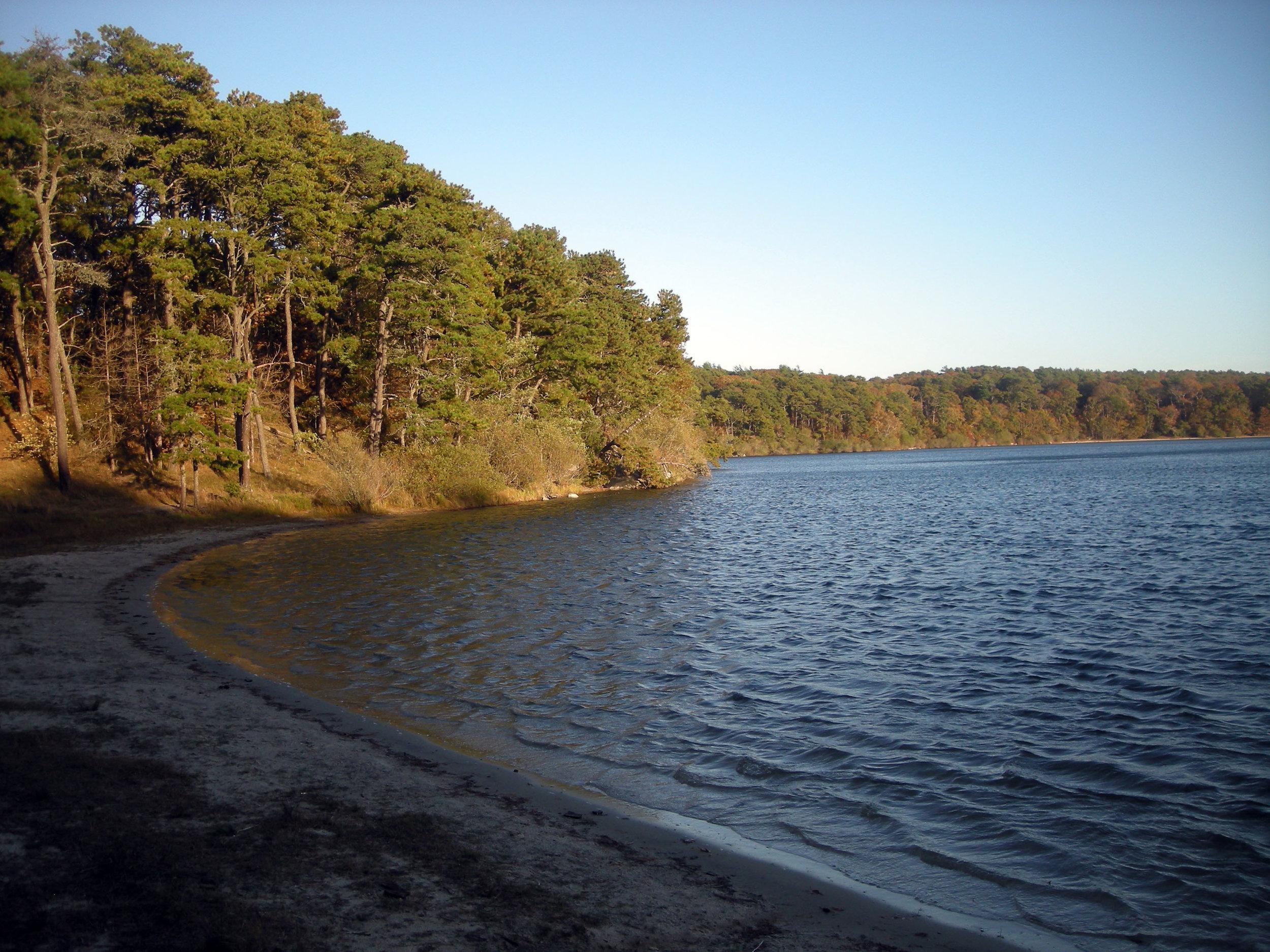 Nickerson State Park.jpg