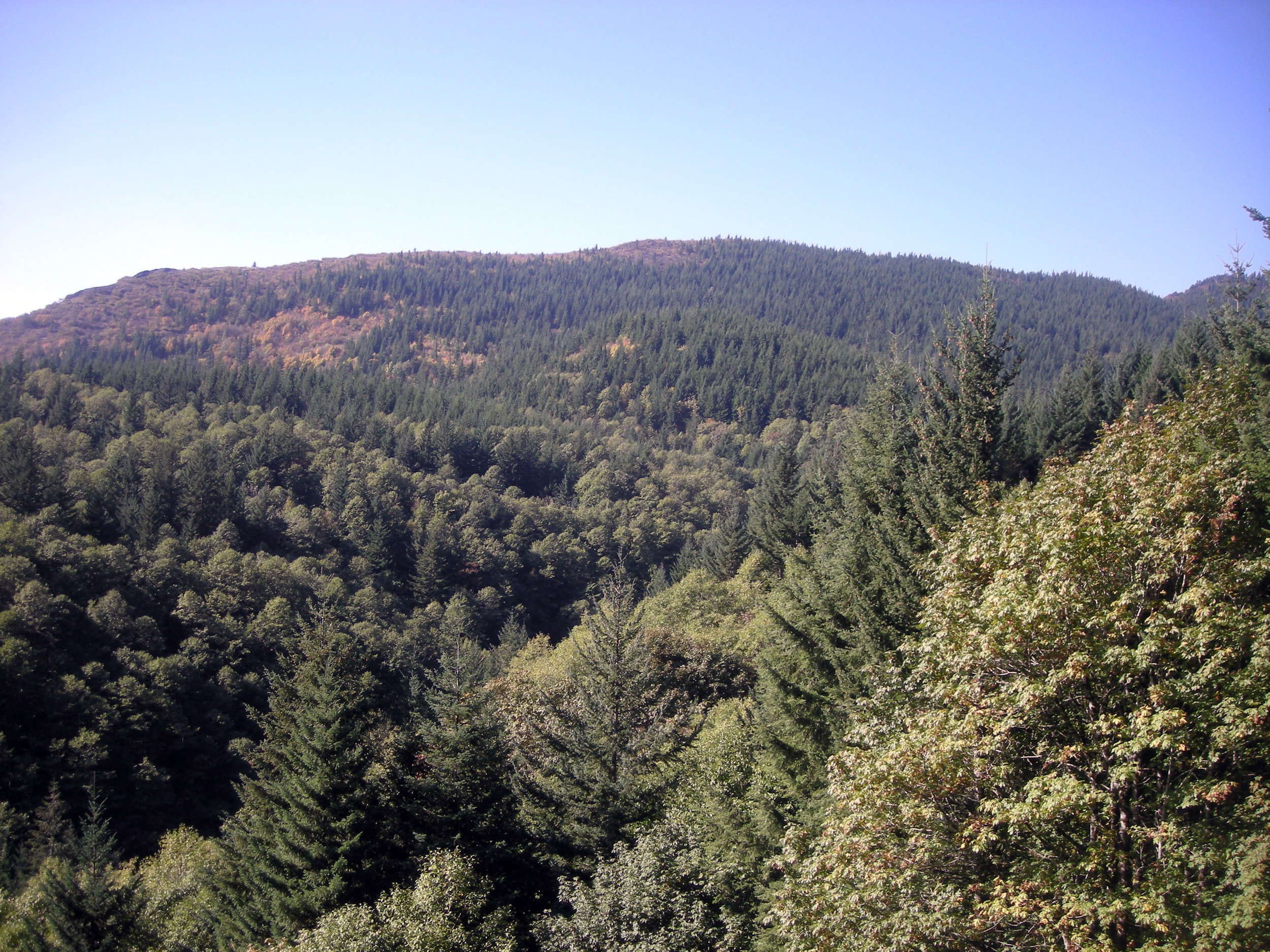 southern Washington.jpg