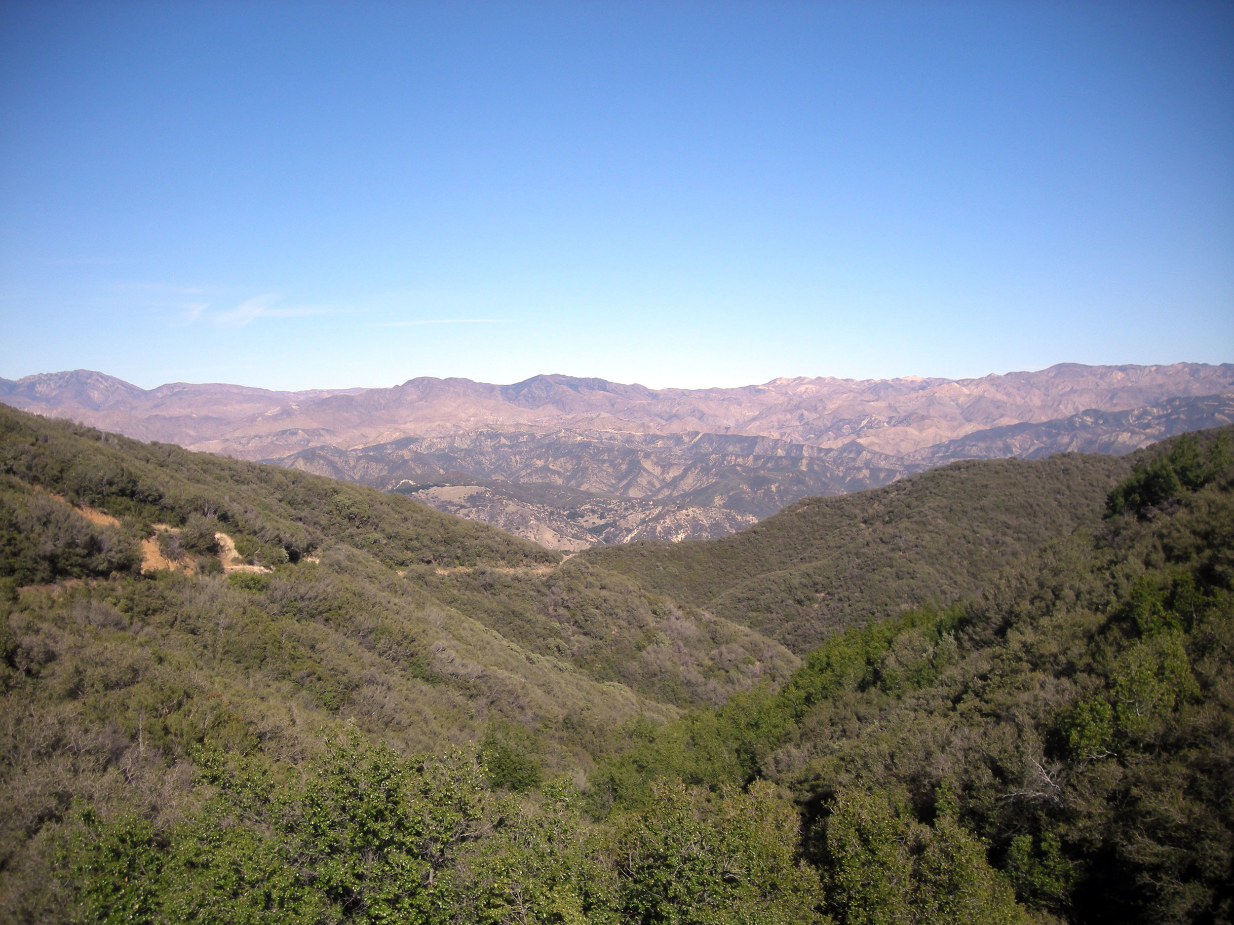Los Padres National Forest.jpg