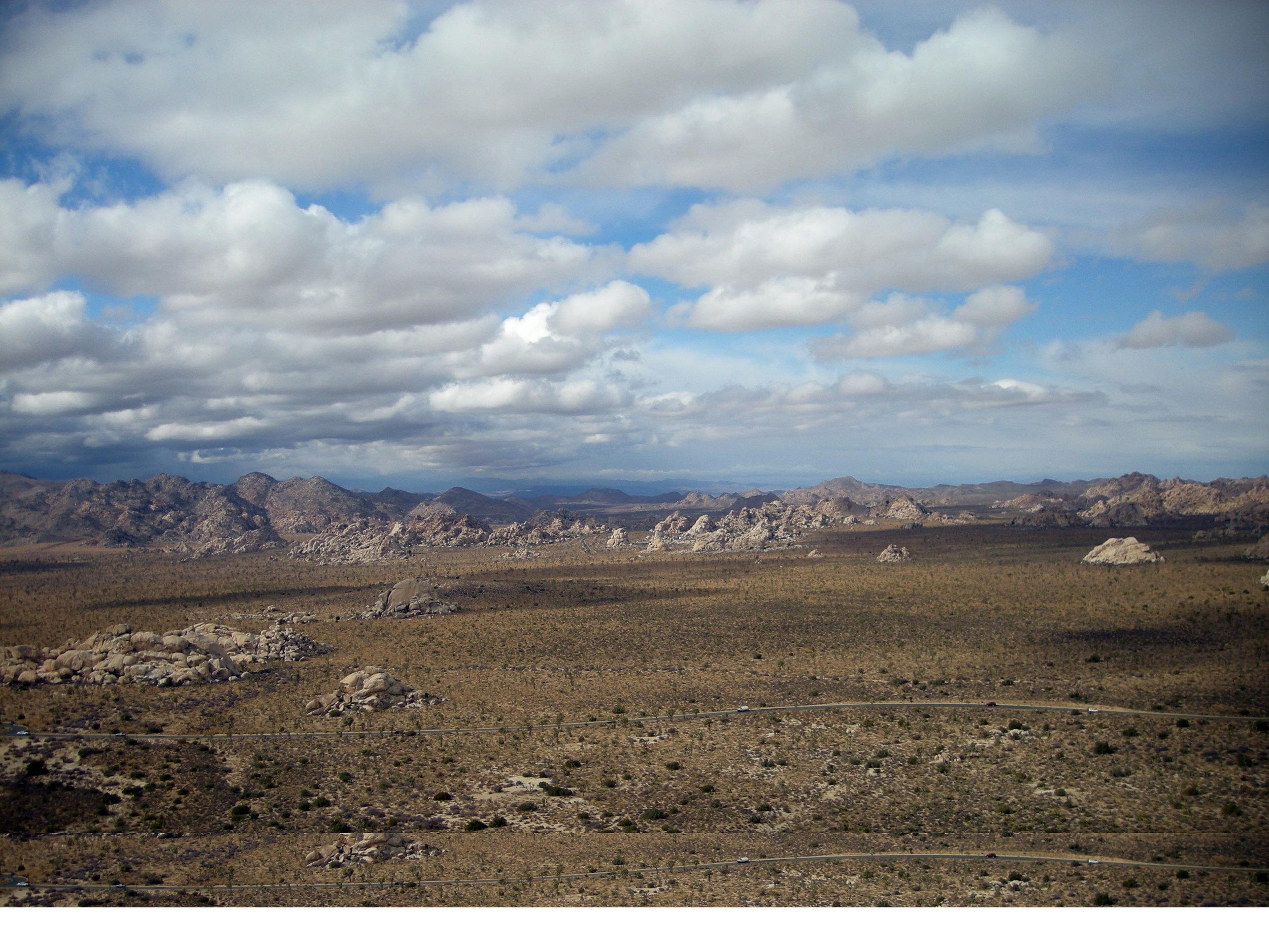 view from Ryan Mountain.jpg