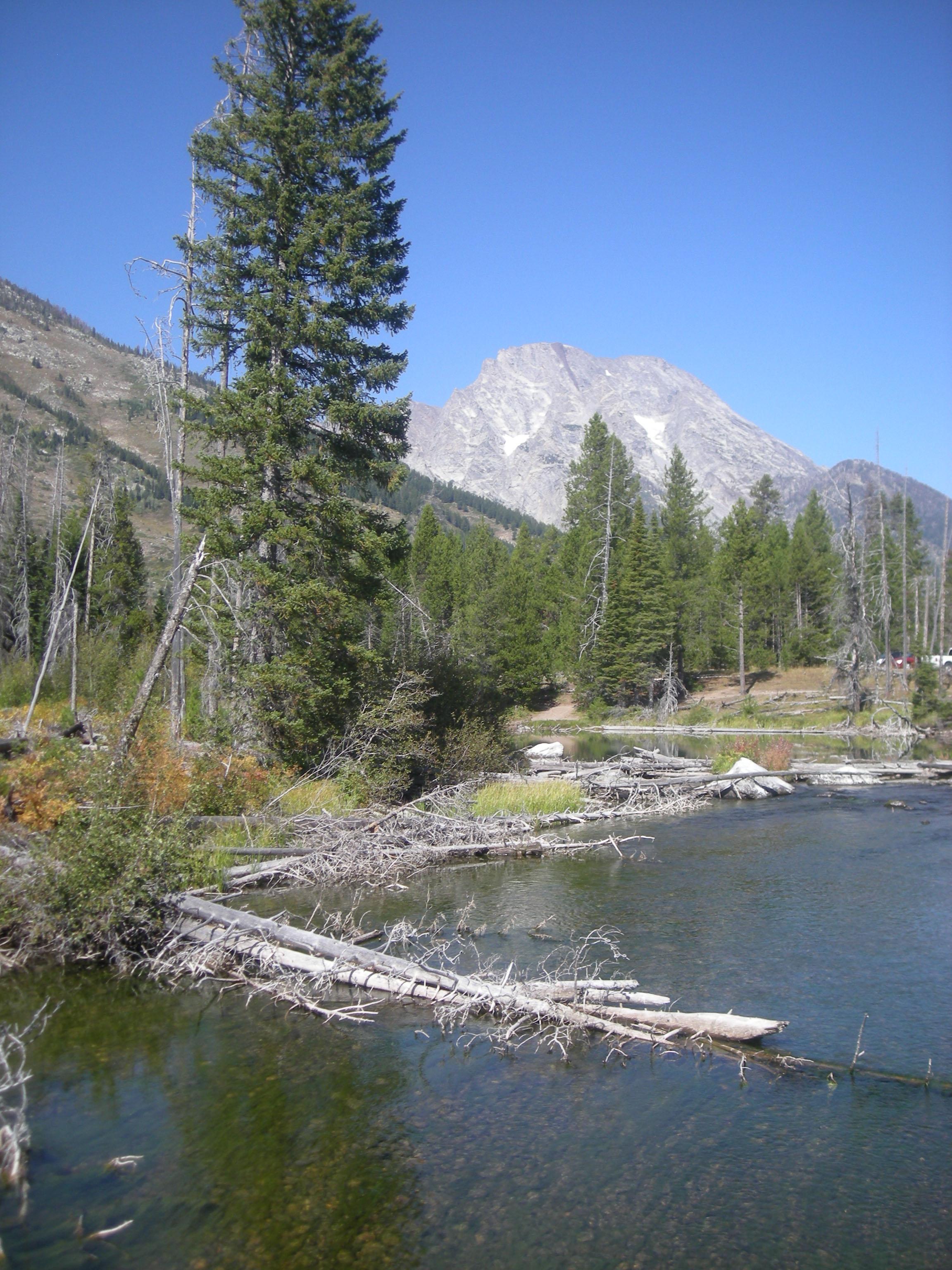 alpine scenery 2.jpg