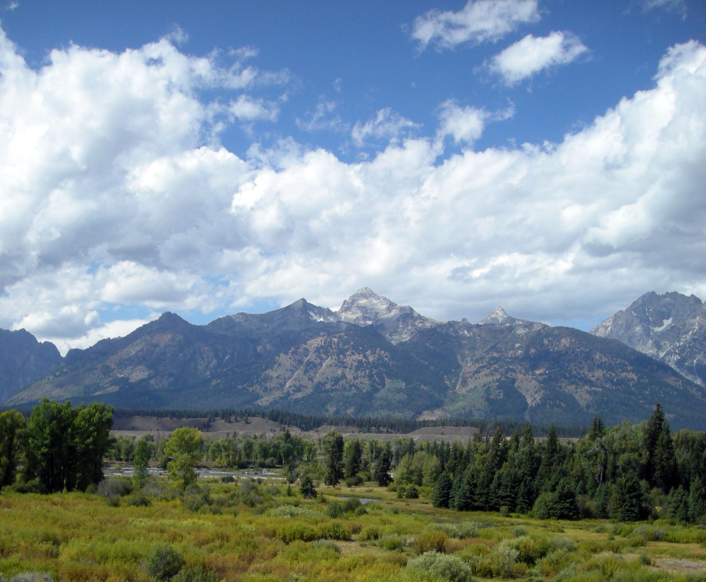 alpine scenery.jpg