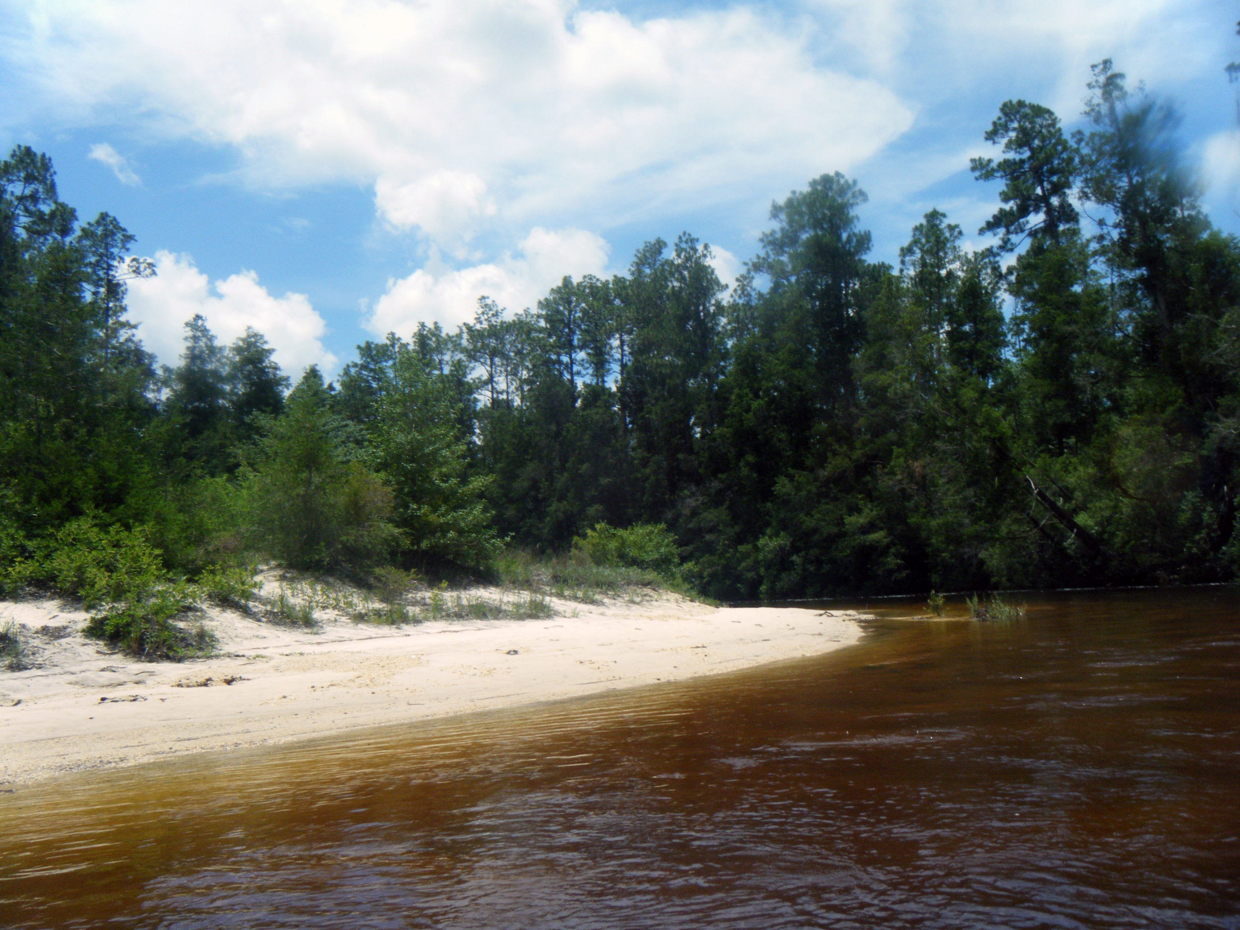 Blackwater River.jpg