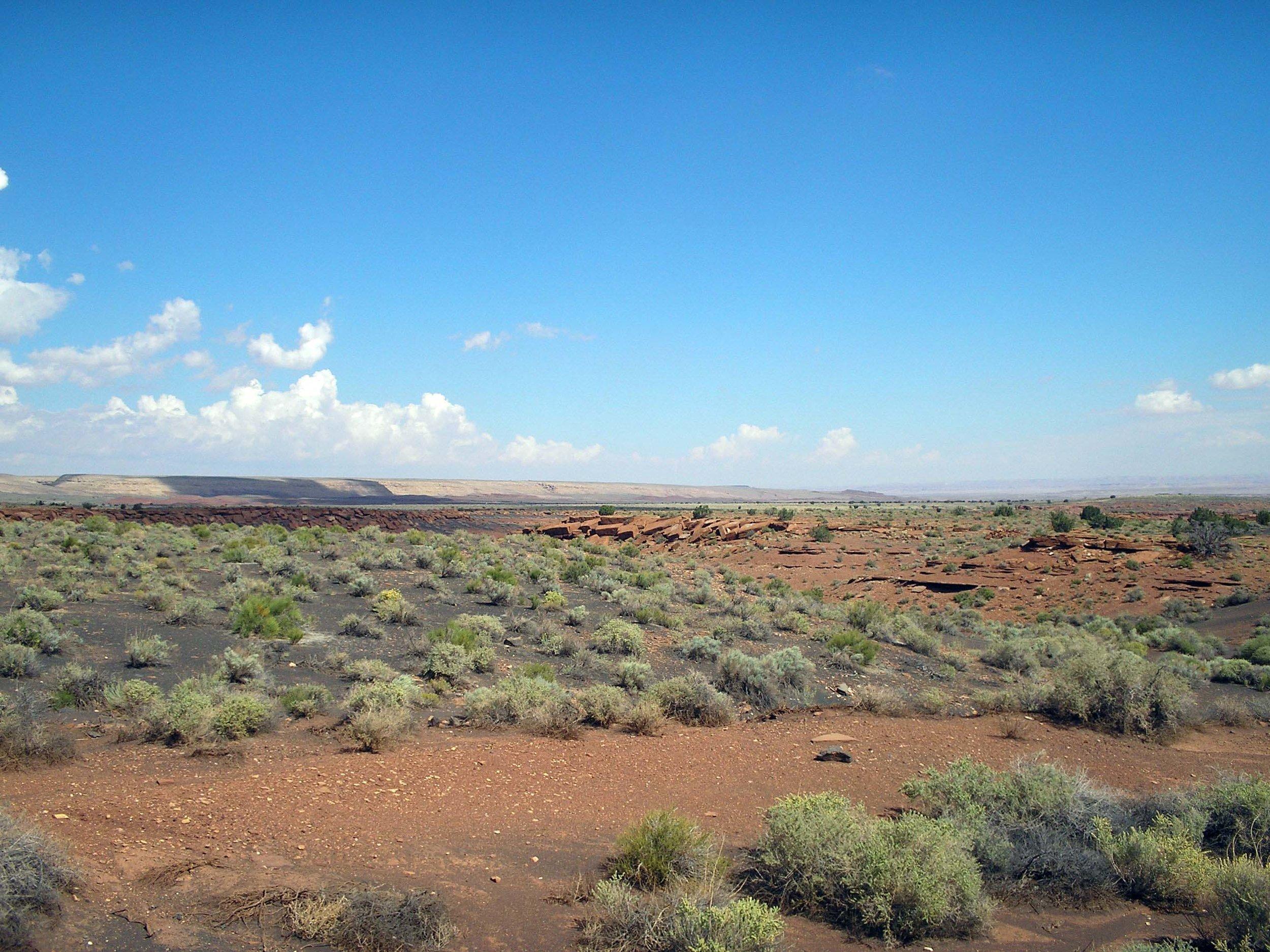 arizona desert.jpg