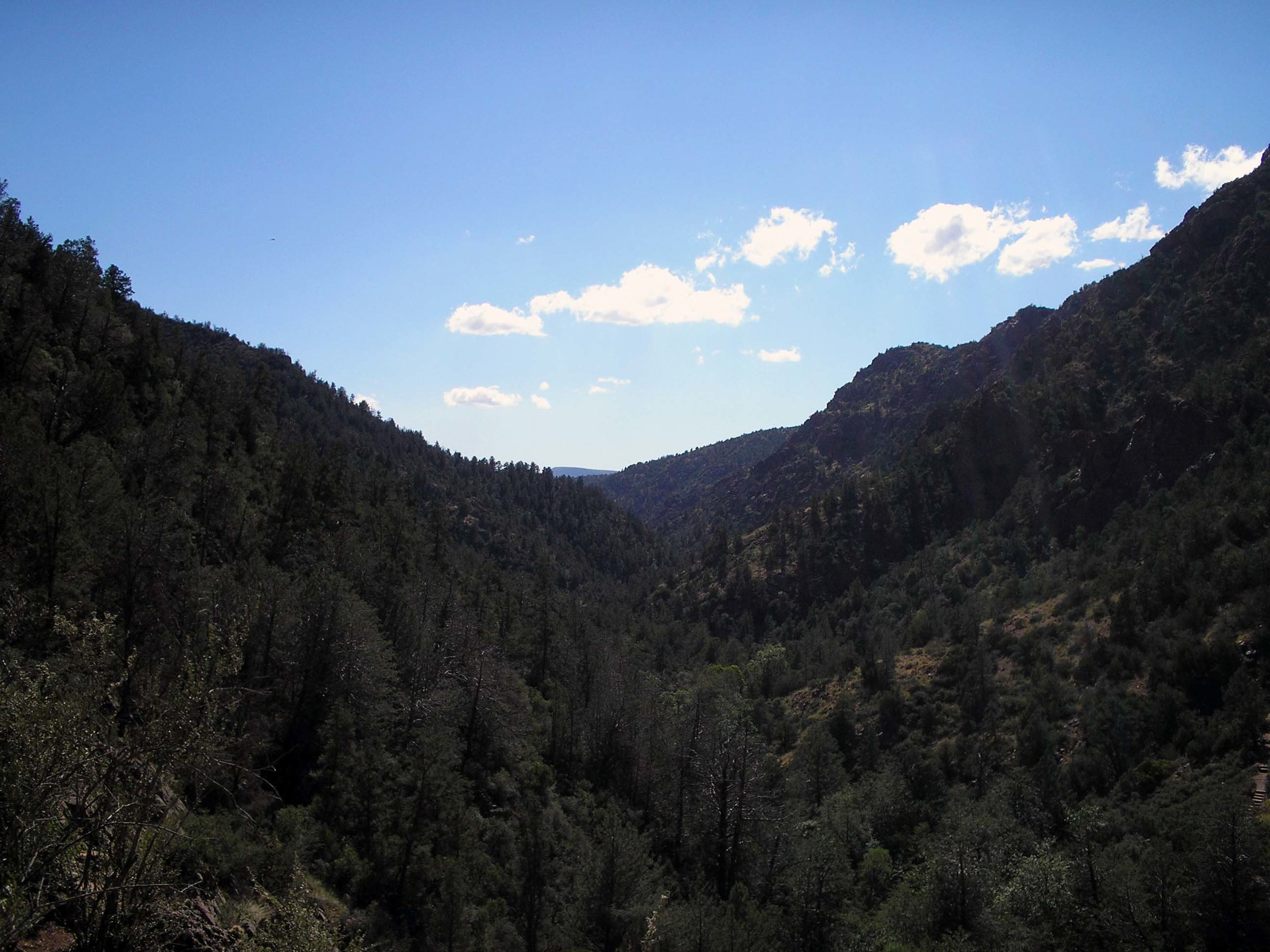 tonto national forest 2.jpg