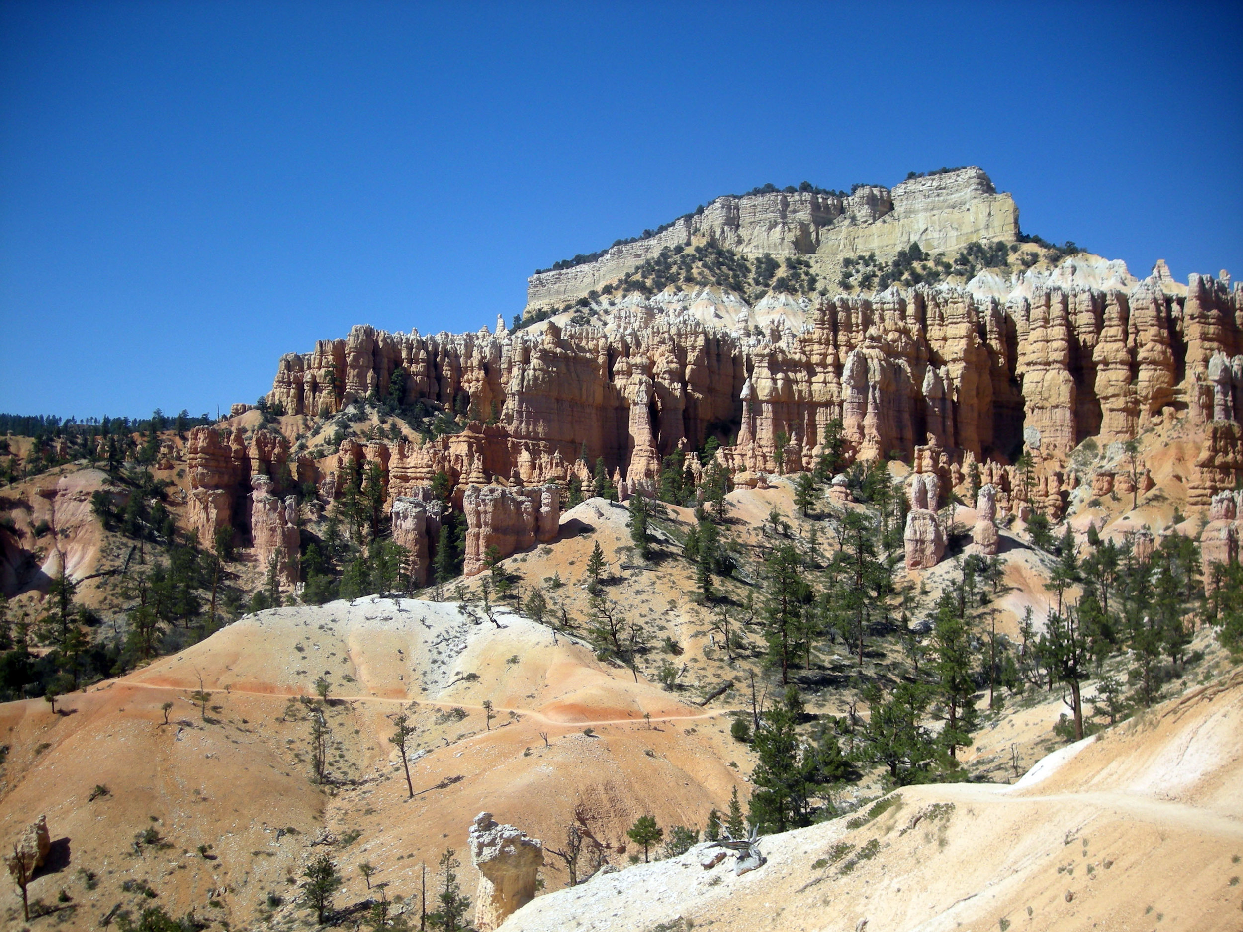 Bryce Canyon hoodoos.jpg
