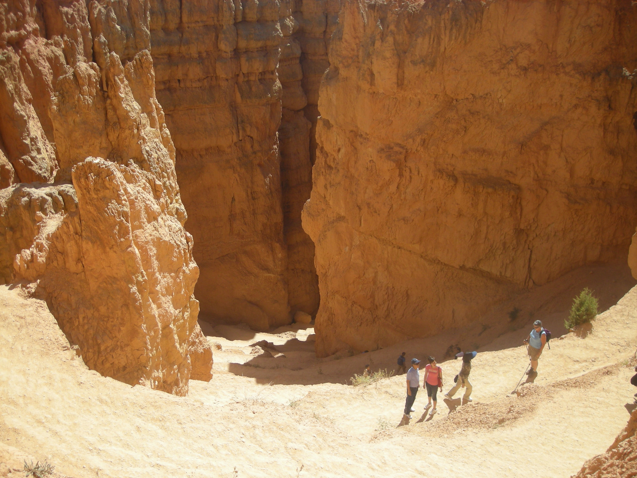Navajo trail switchbacks.jpg