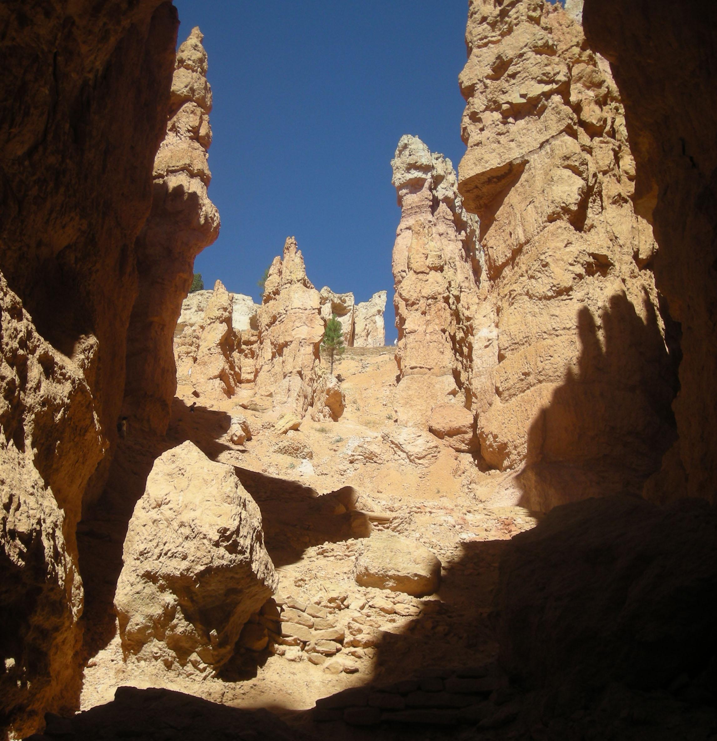 Navajo trail.jpg