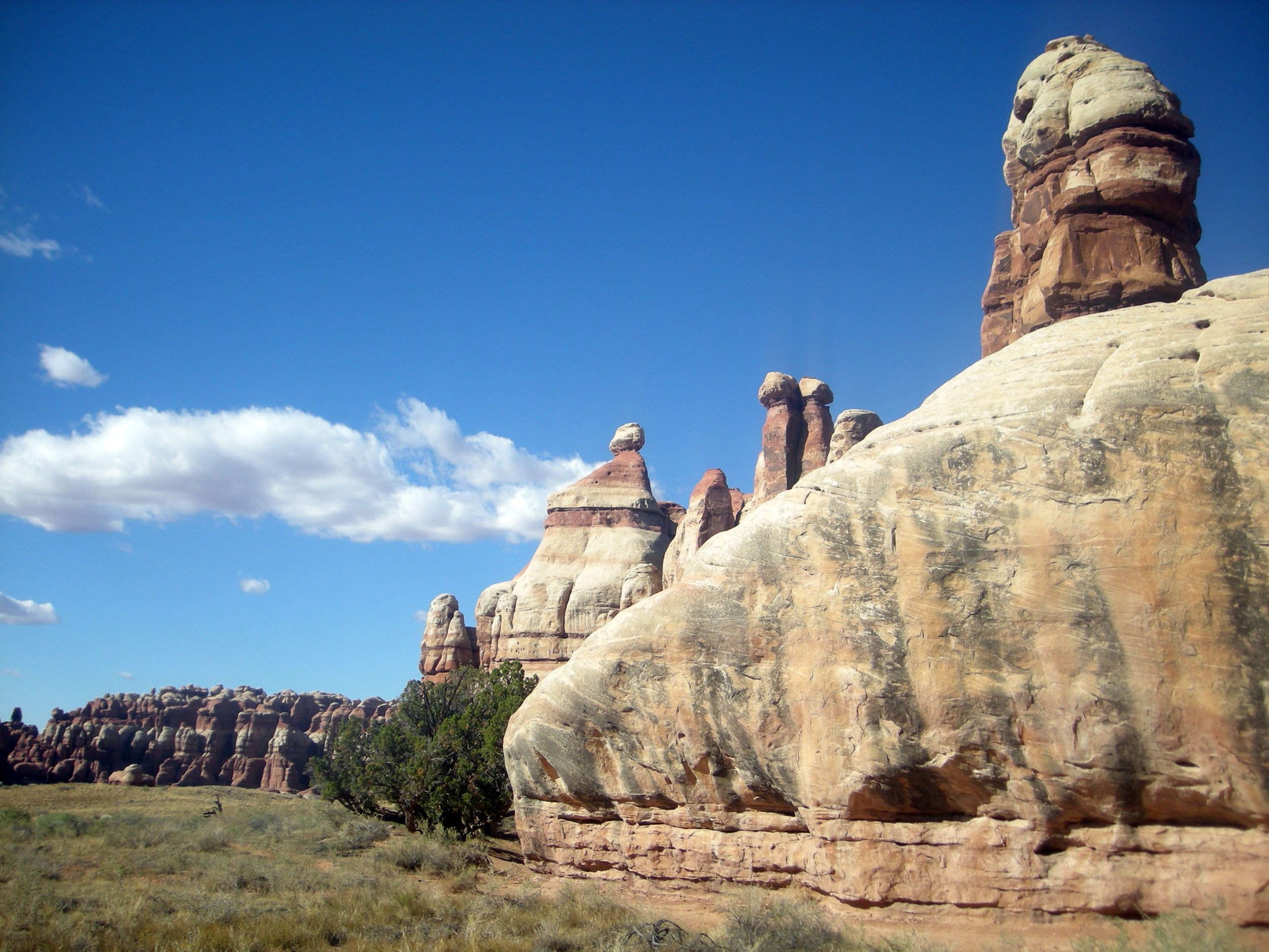 in the valley of the needles.jpg