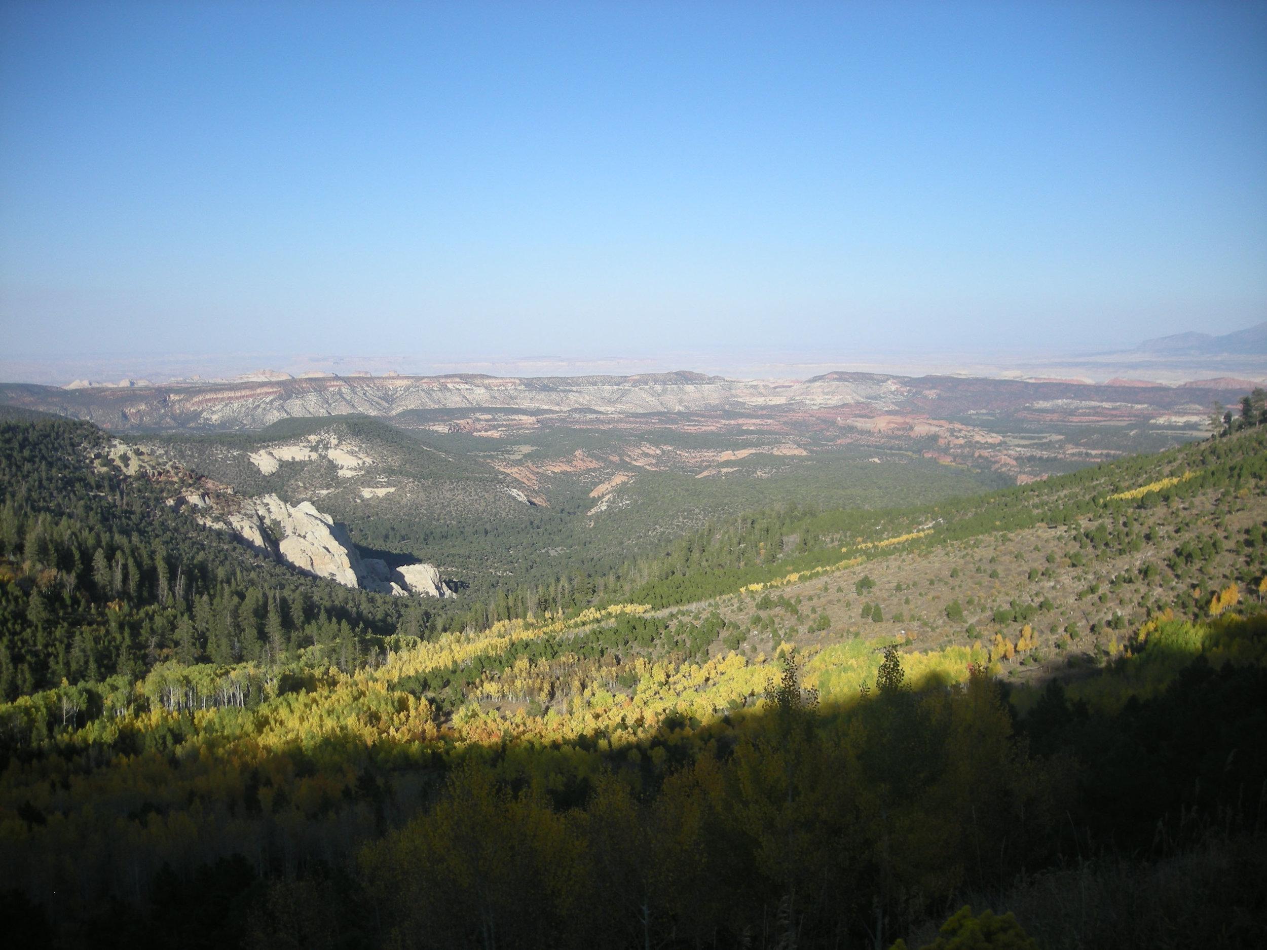 Fall in Utah 3.jpg