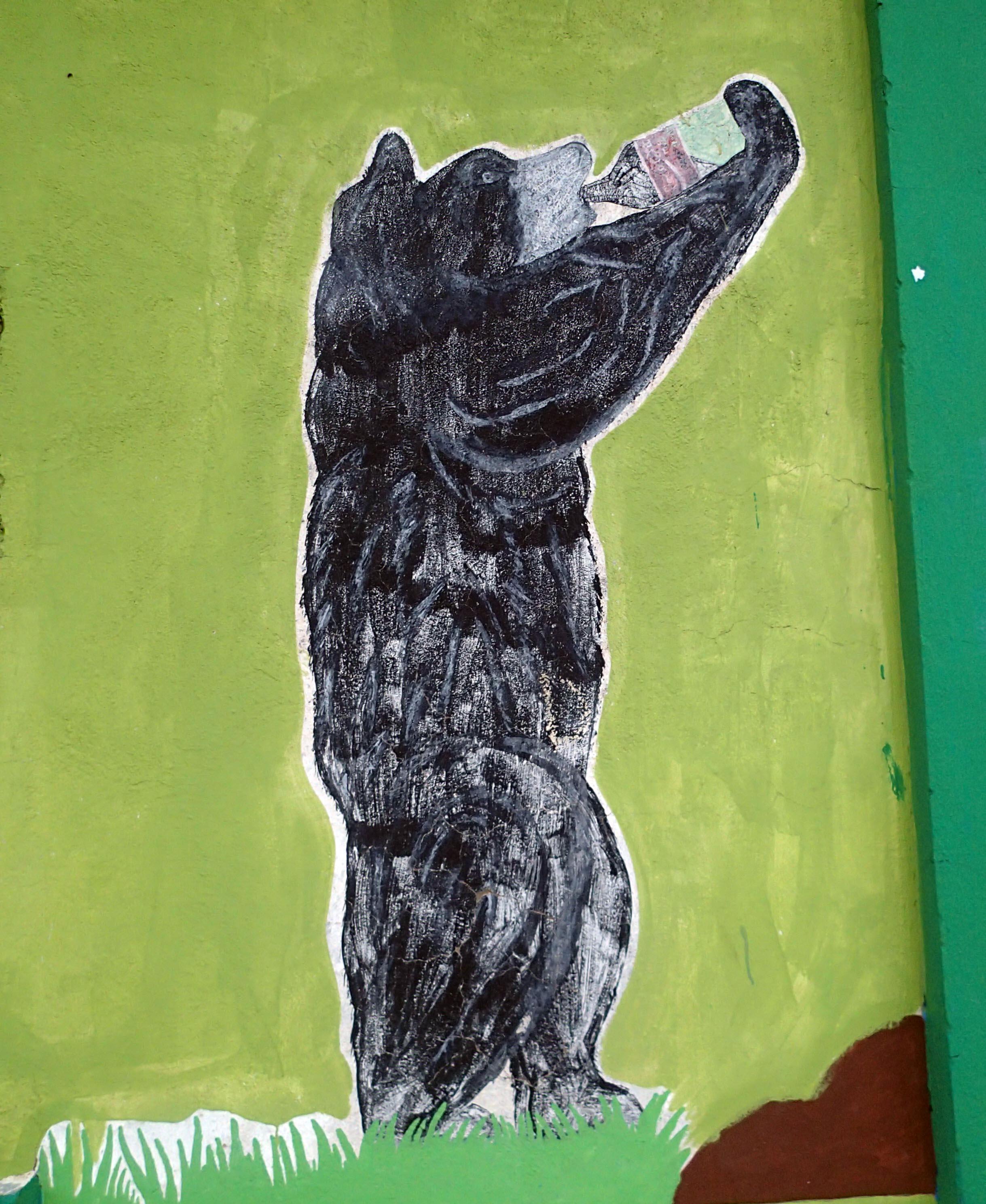 drunk bear.jpg