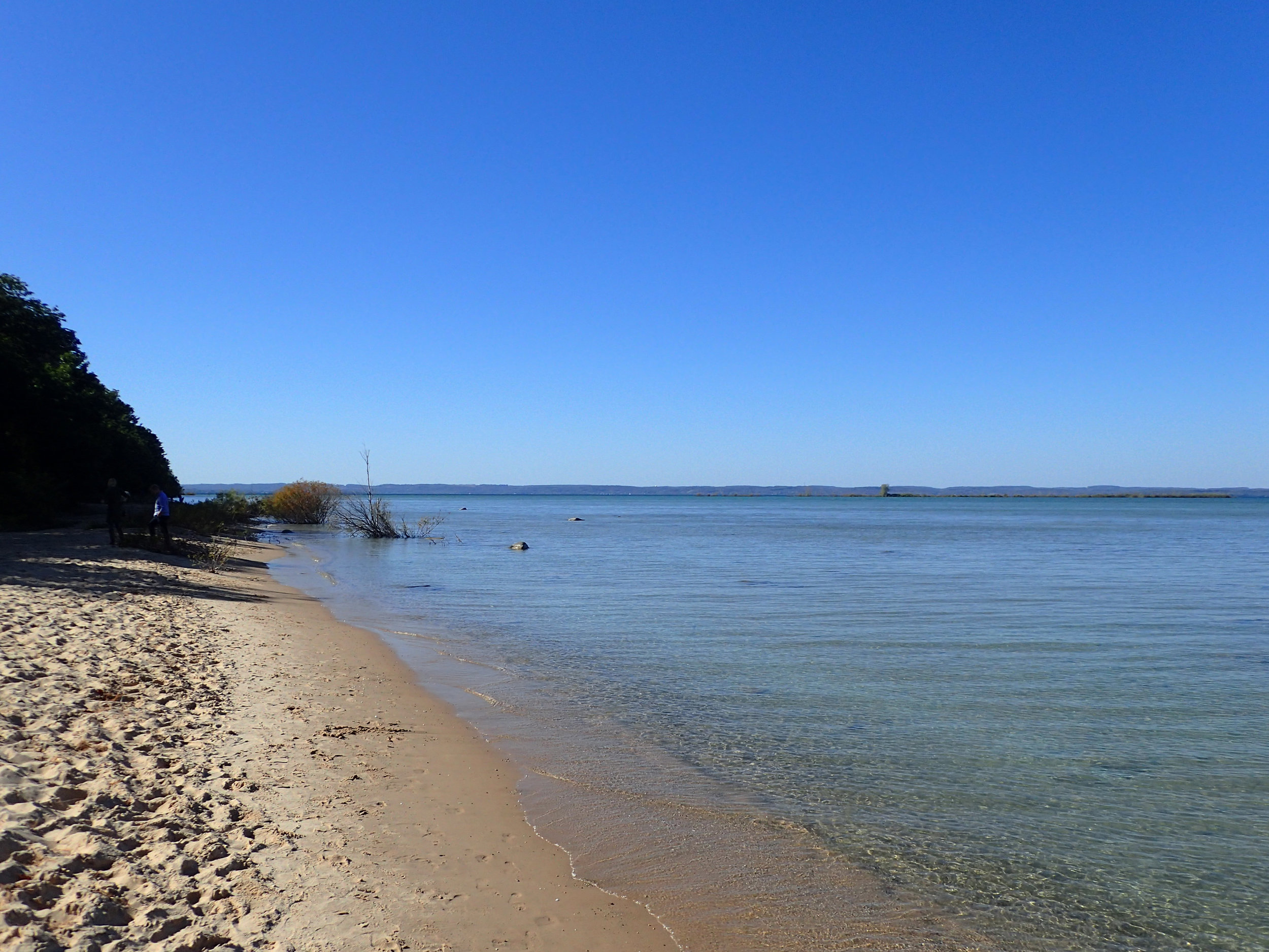 freshwater beach.jpg