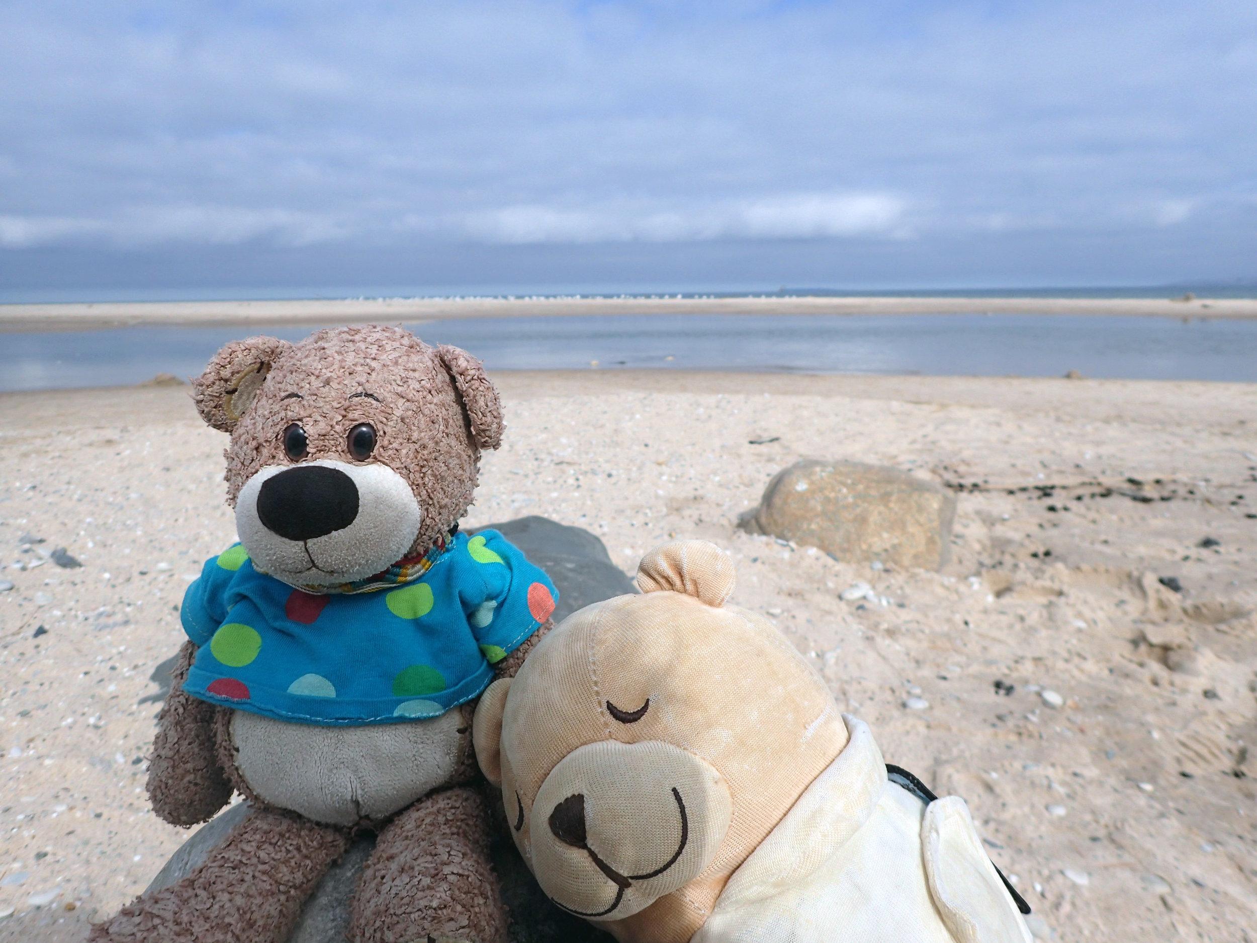 beach bearbies.jpg