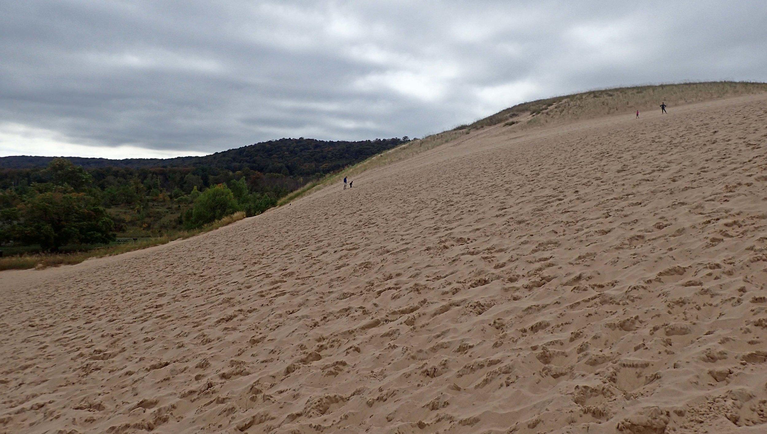 first dune.jpg