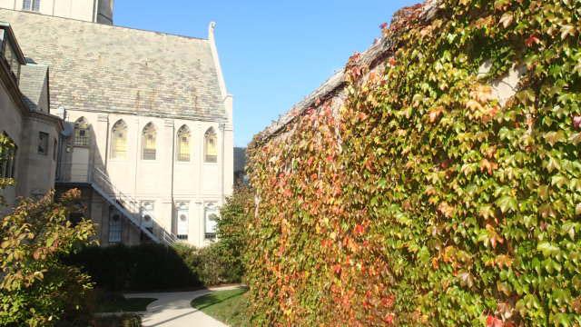 fall at Northwestern.jpg