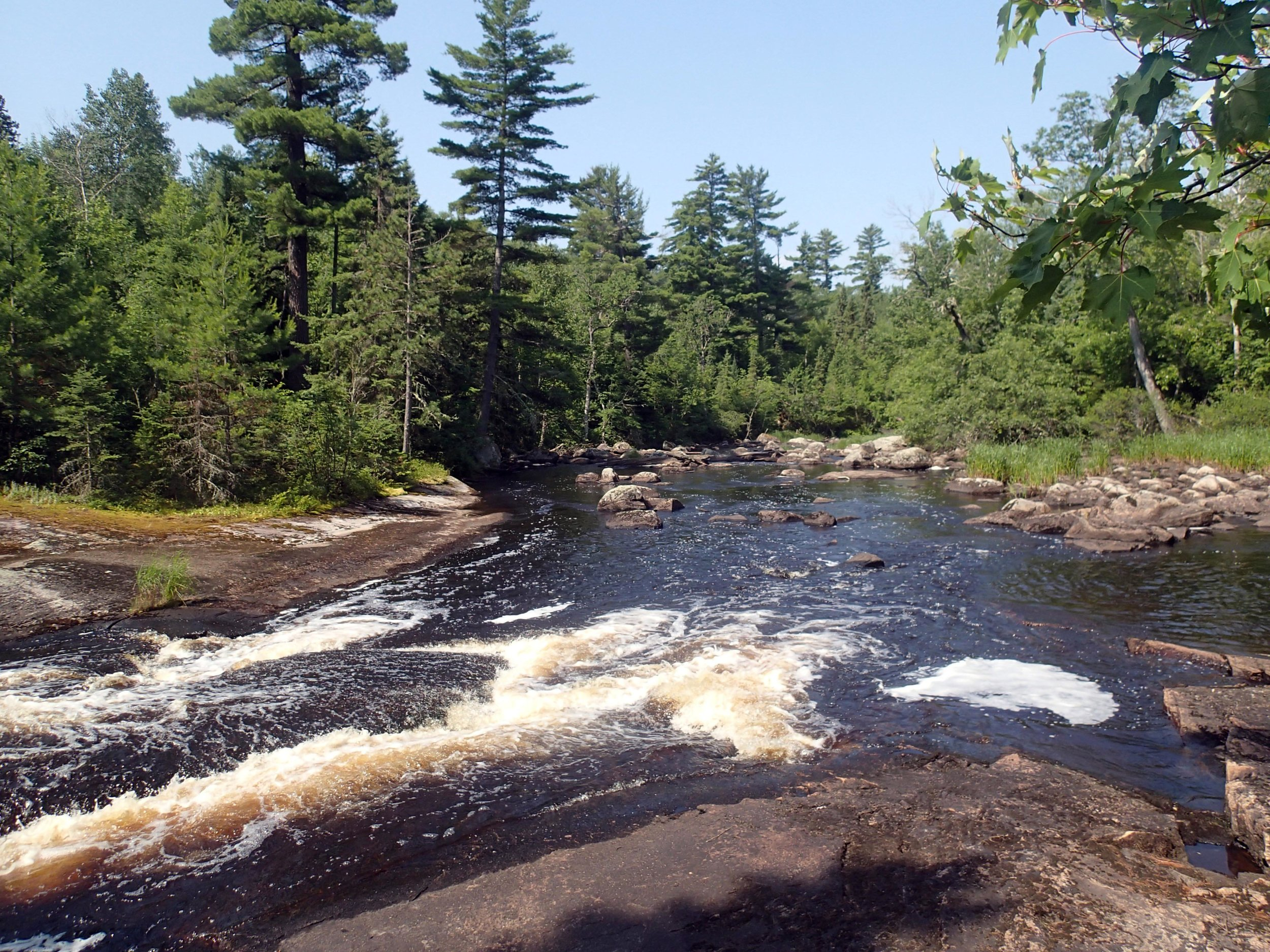 mighty Moose River.jpg