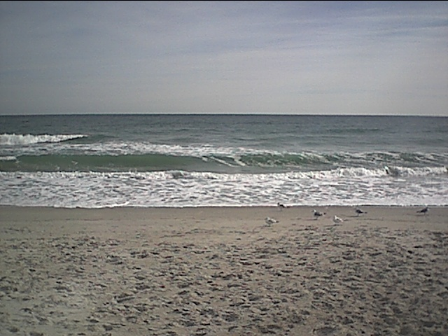 1-12-03 wrightsville beach with seagulls.JPG