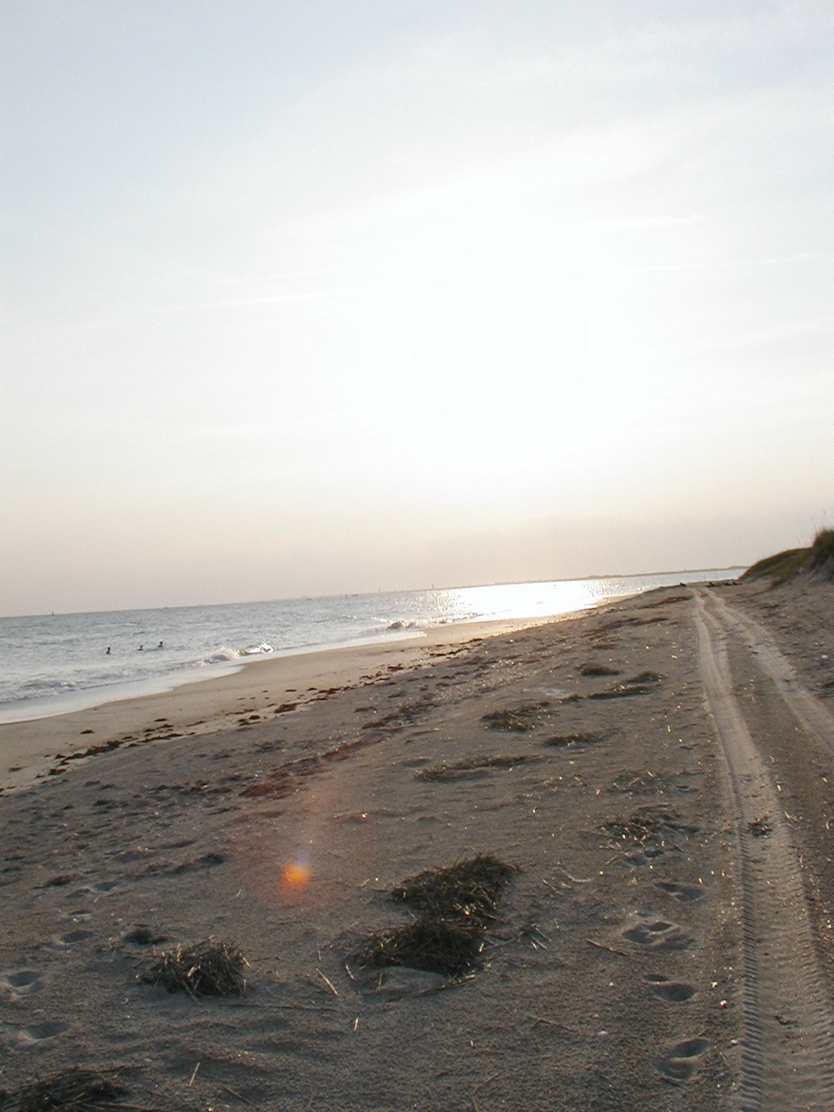 beachevening2.jpg