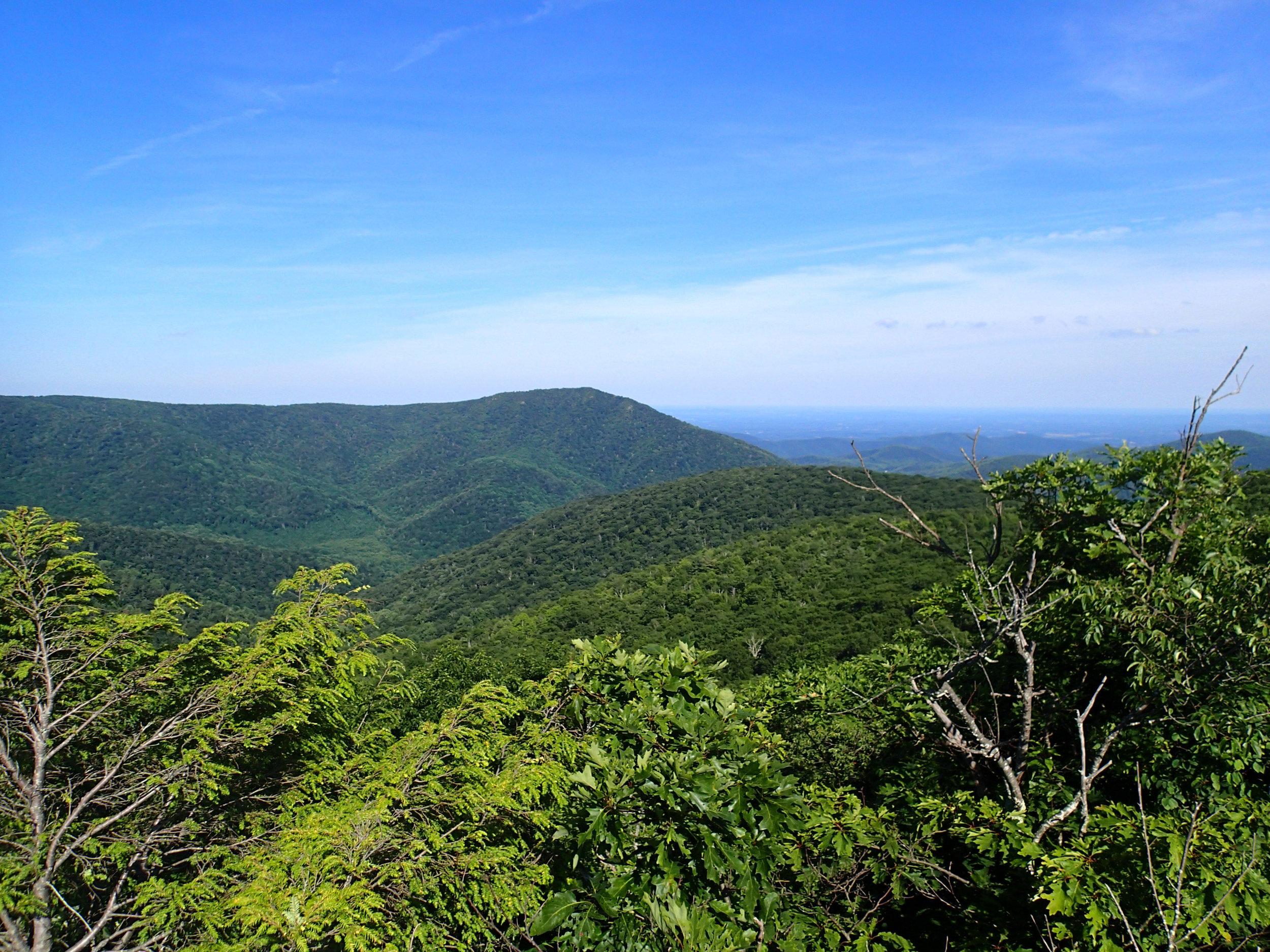 Bearfence Mountain view.jpg