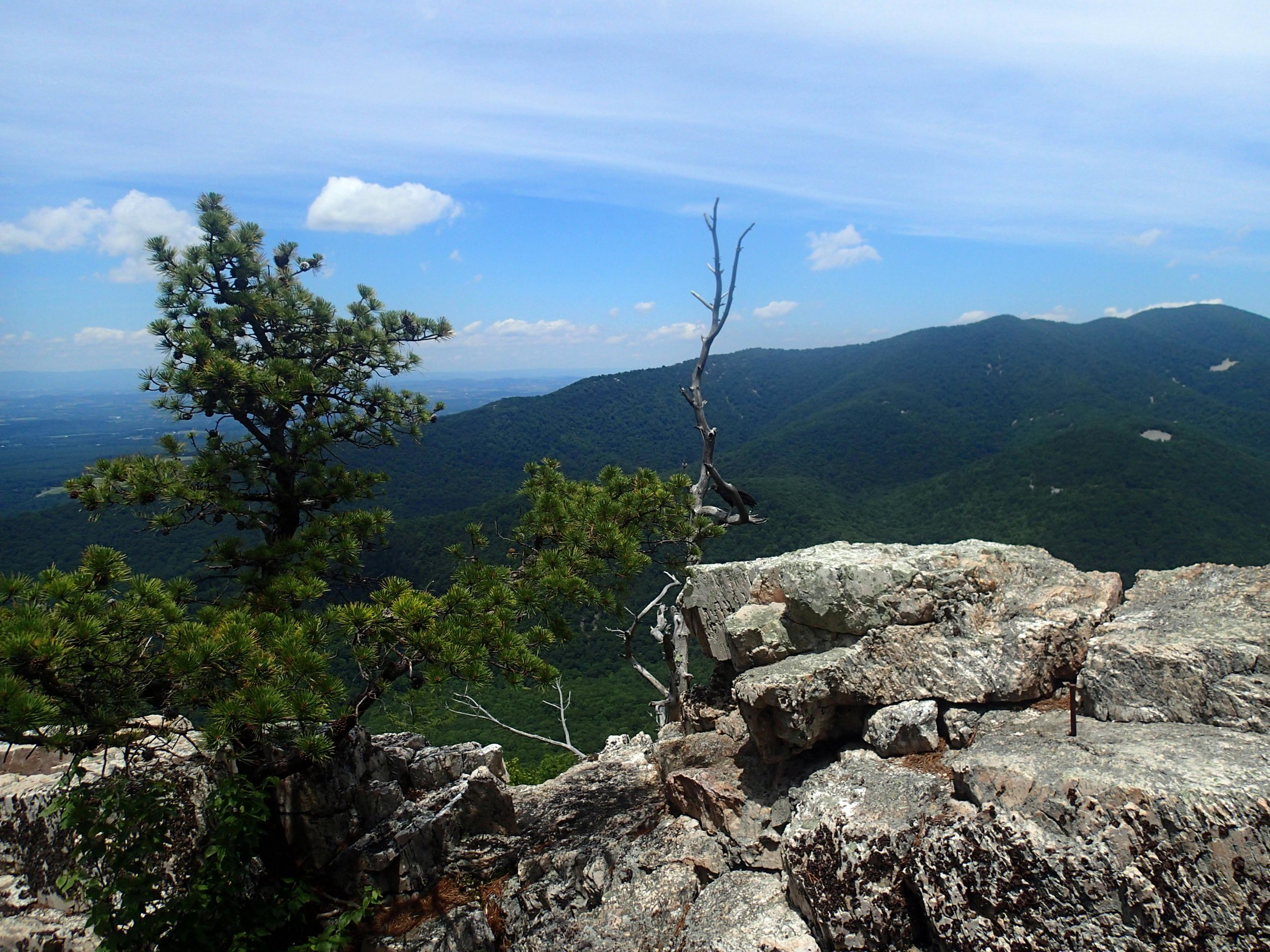 Calvary Rocks.jpg