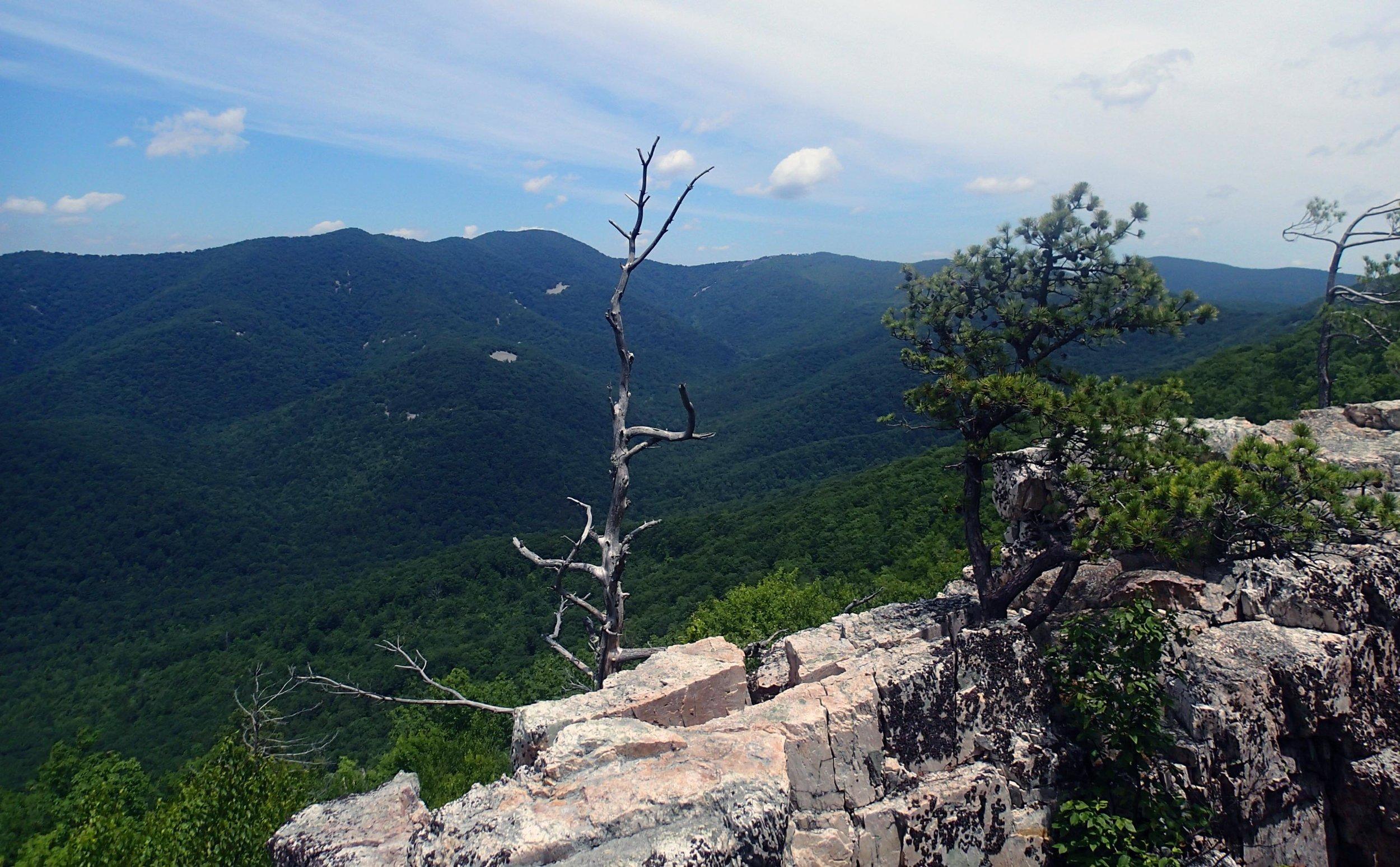 hiking the Shenandoah.jpg