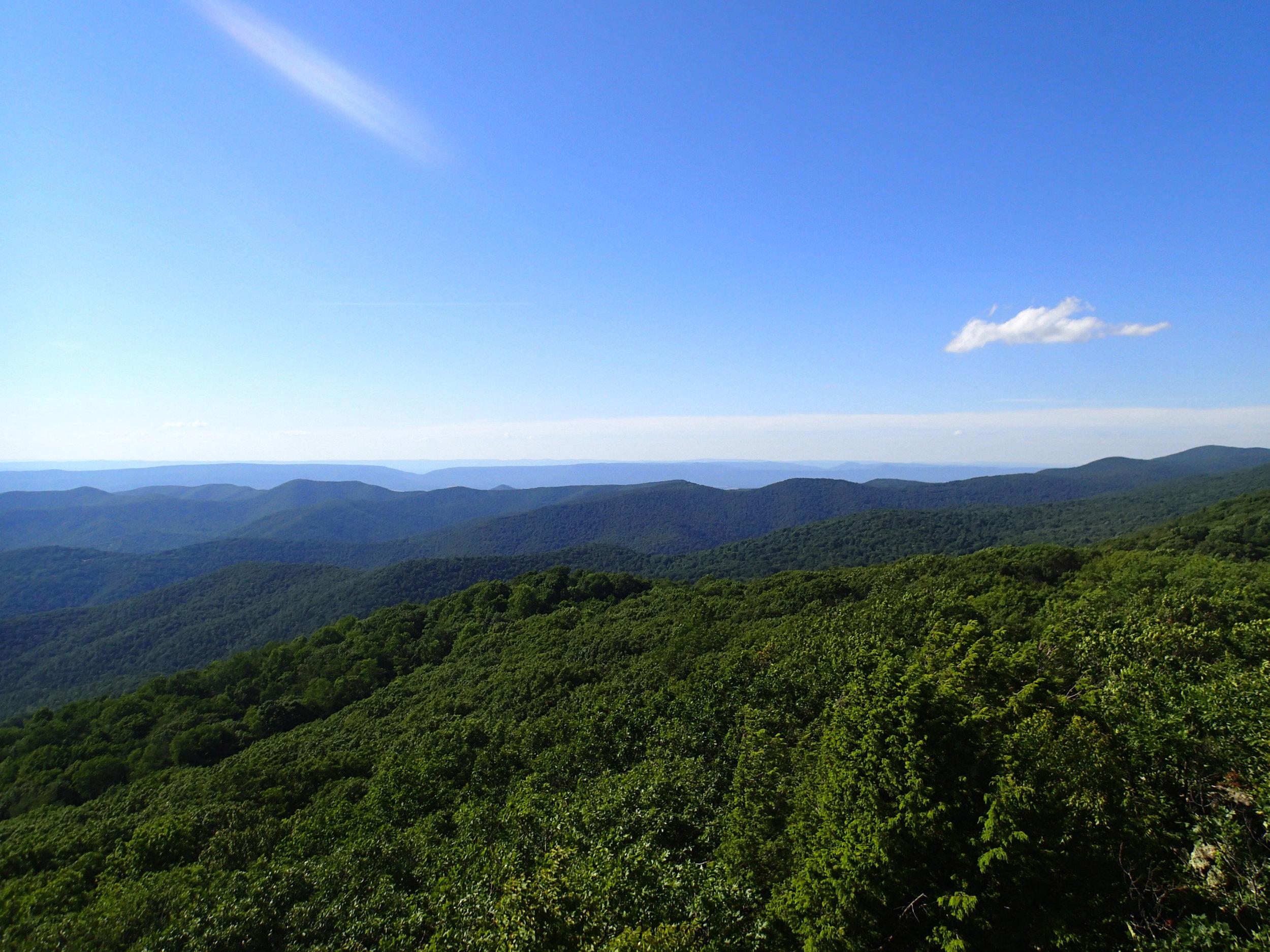 view from Bearfence Mountain.jpg