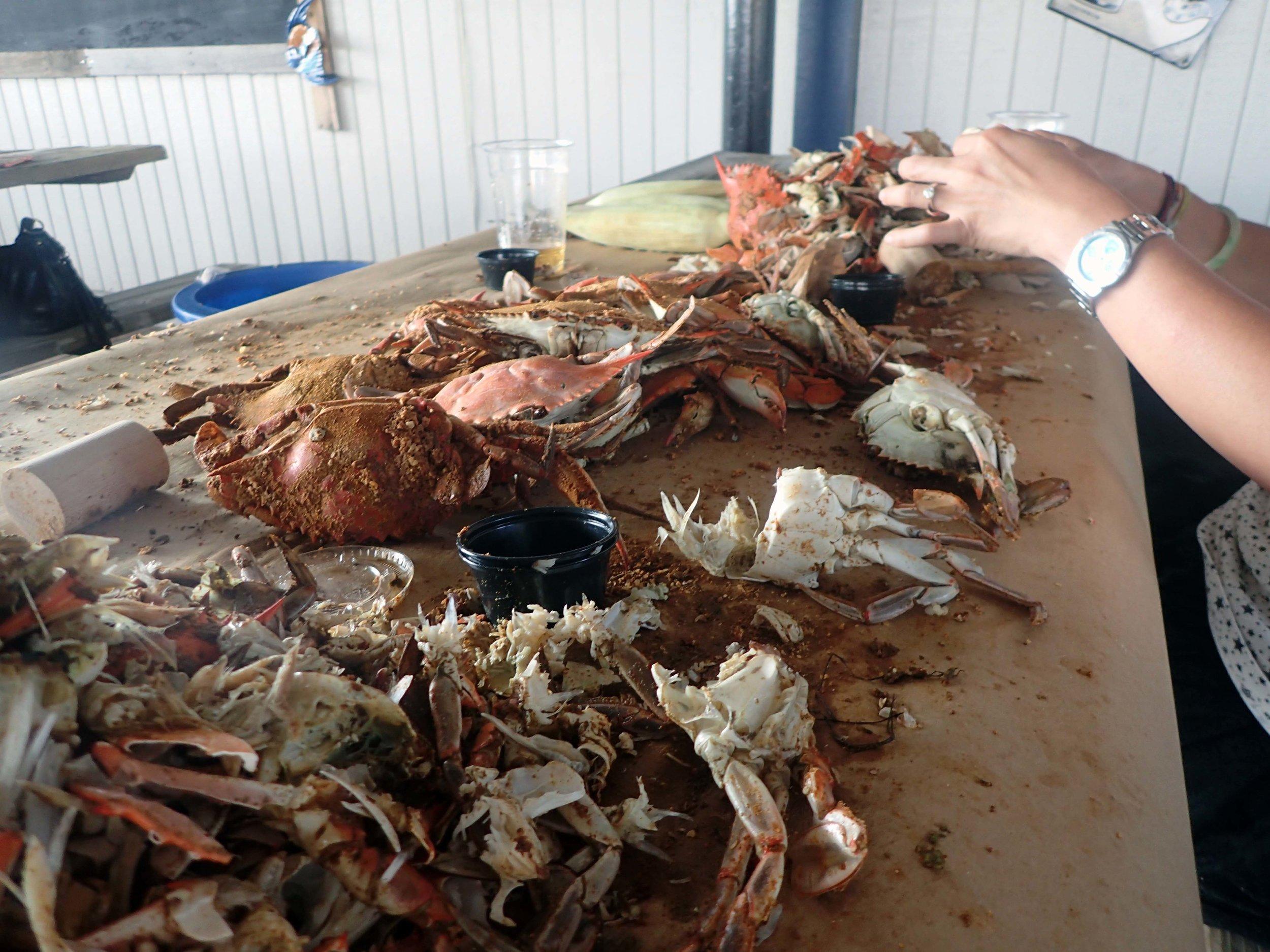 Crabdry.jpg