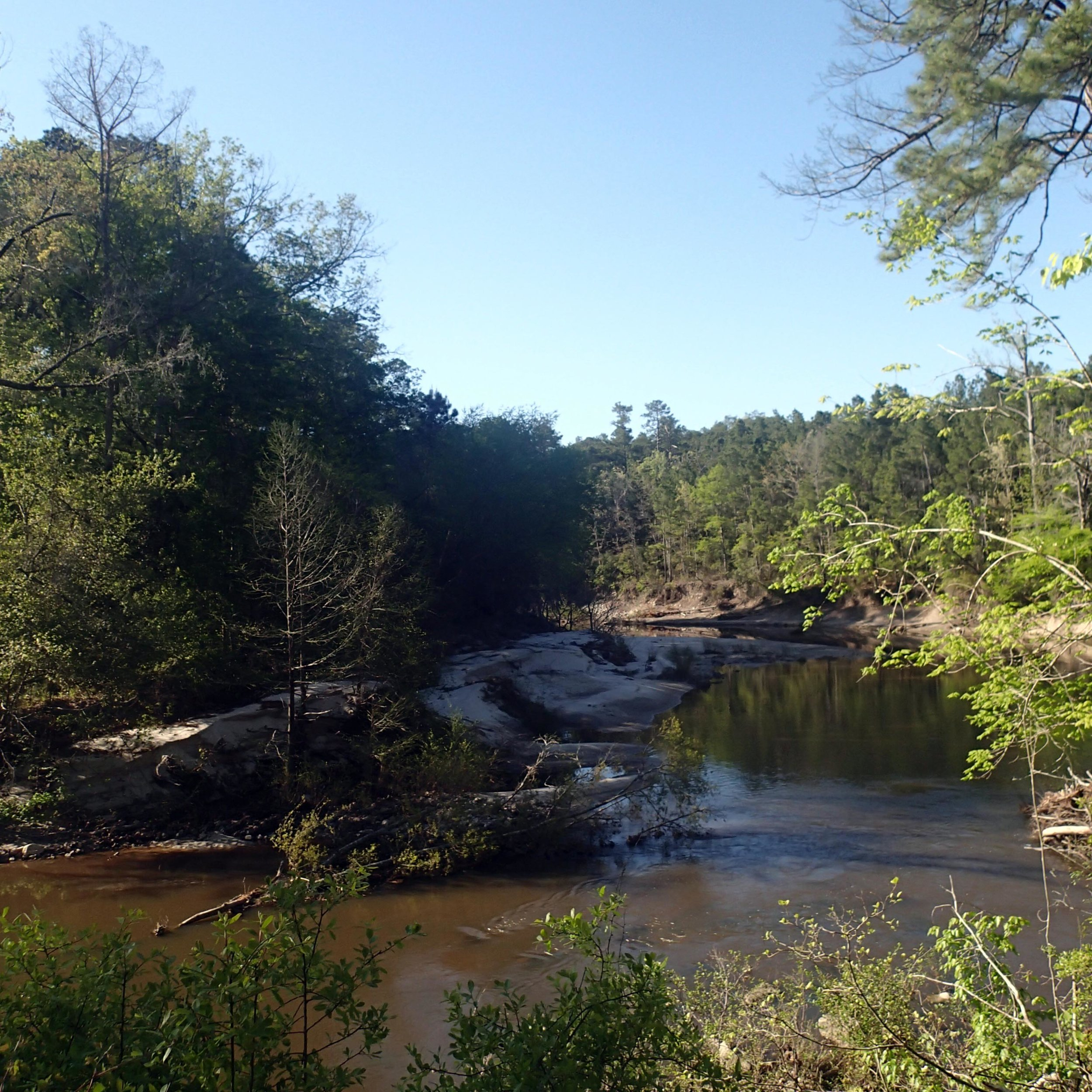 hiking in Kisatchie.jpg