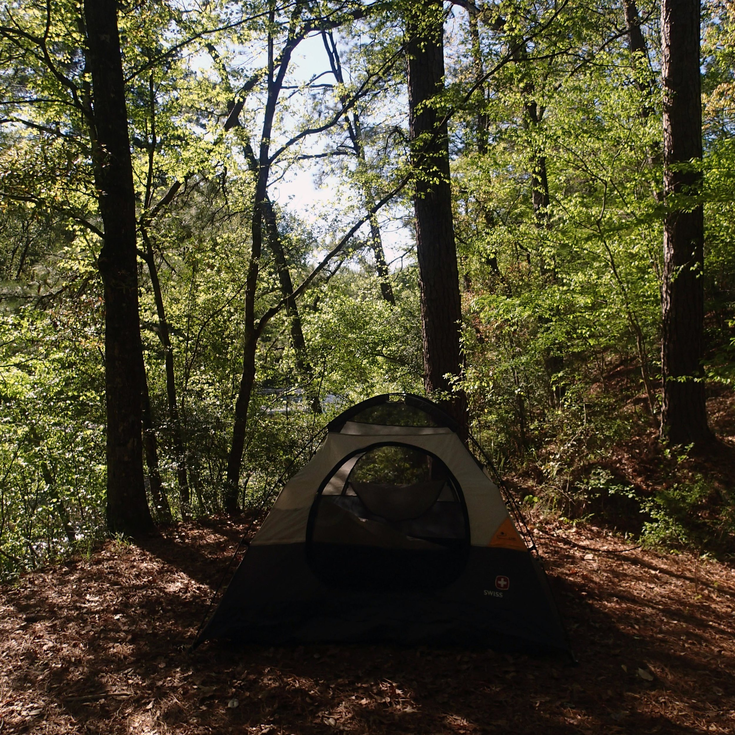 Kisatchie Bayou campground.jpg