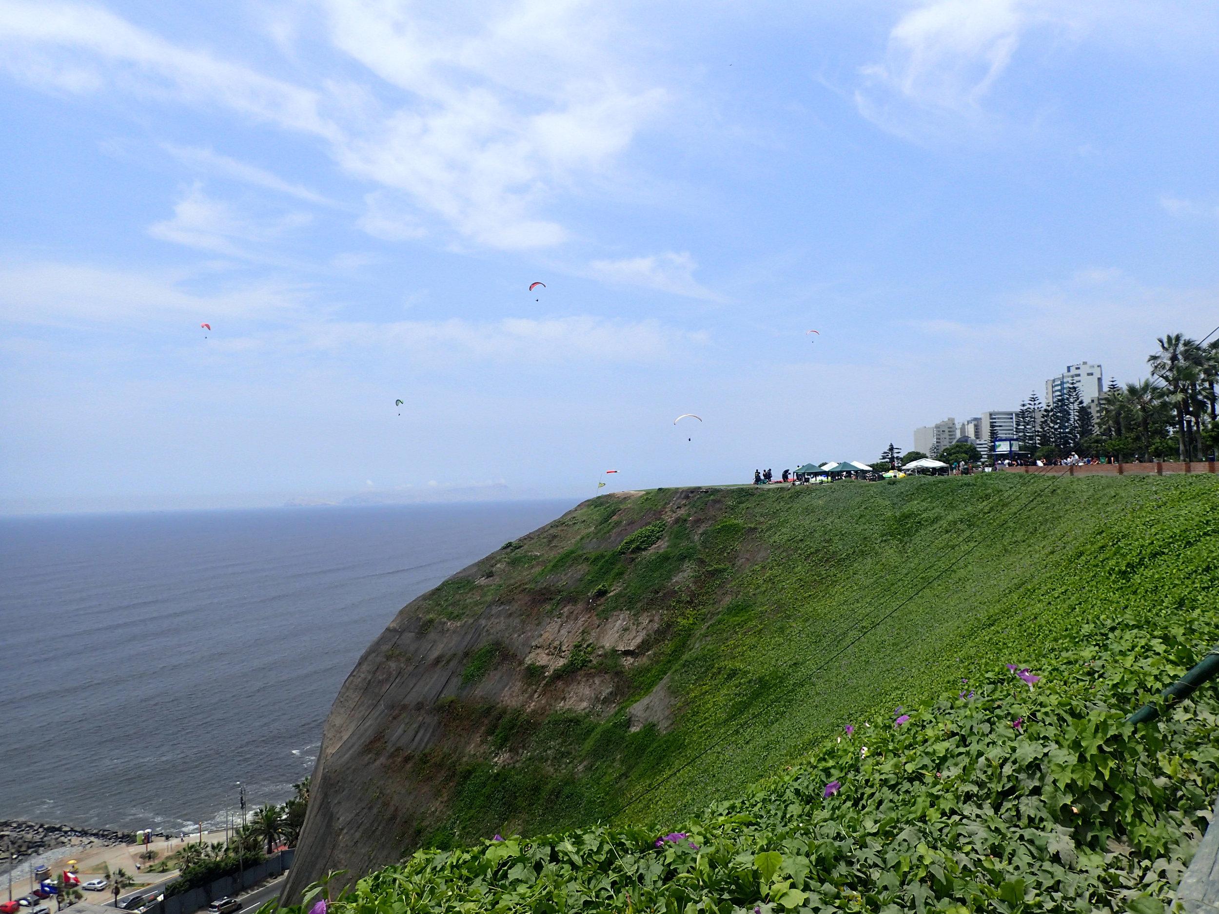coastal bluffs 1-6-18.jpg