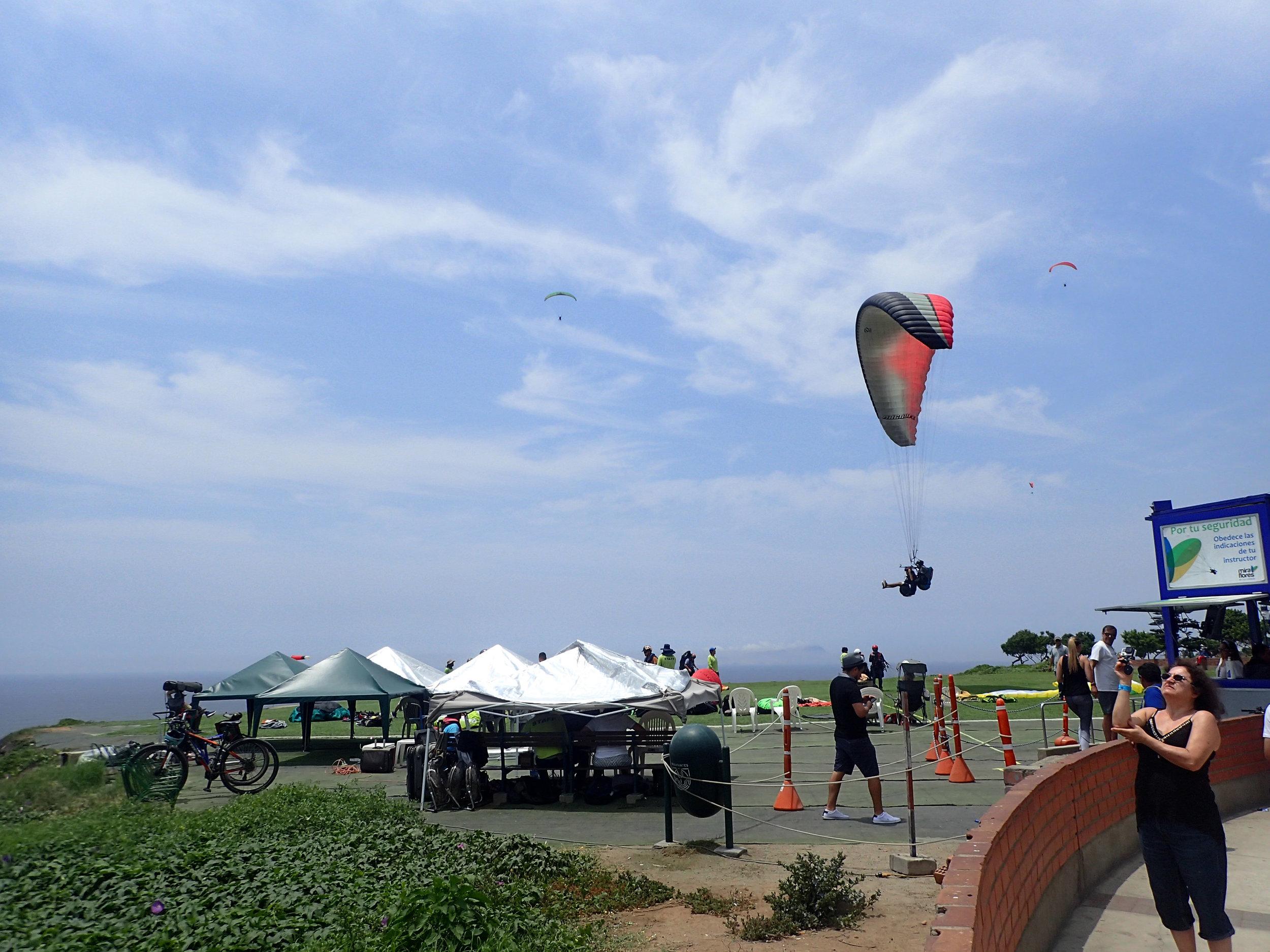 paraglyder field.jpg