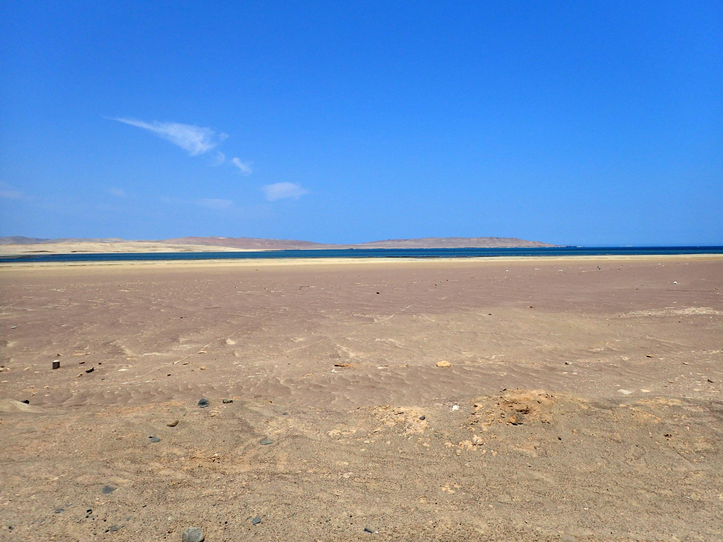 lovely desolation.jpg