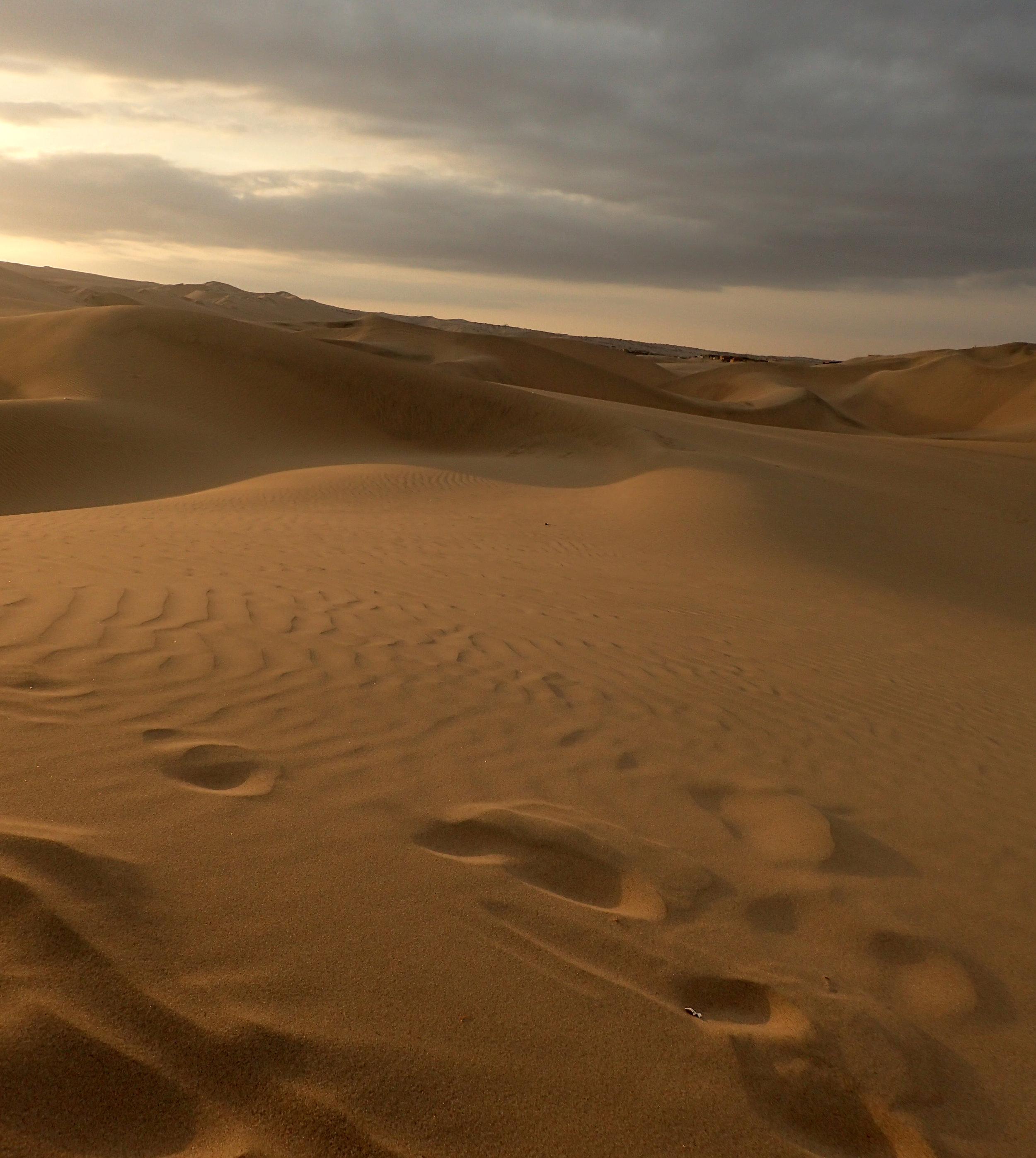 amongst best dune shots.jpg