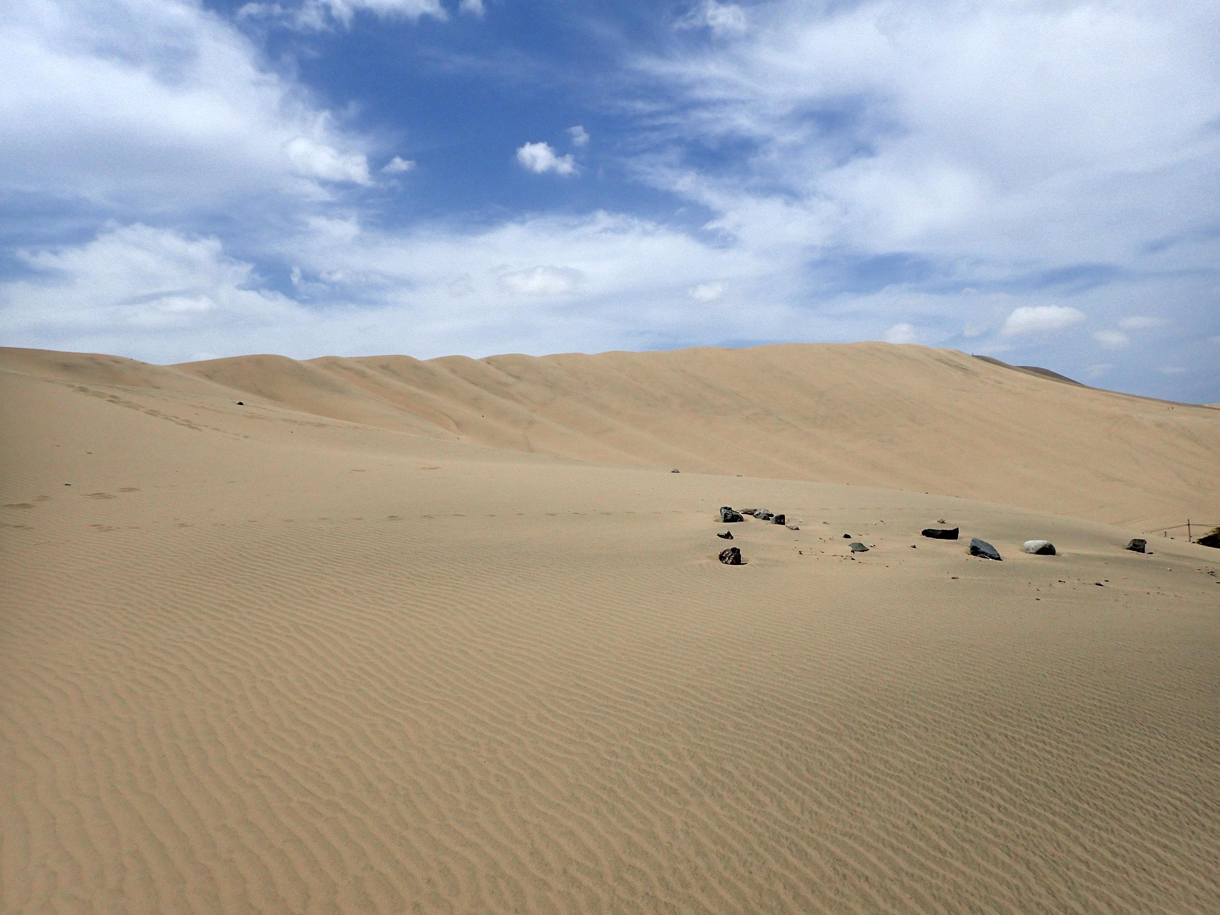 great dunes shot.jpg