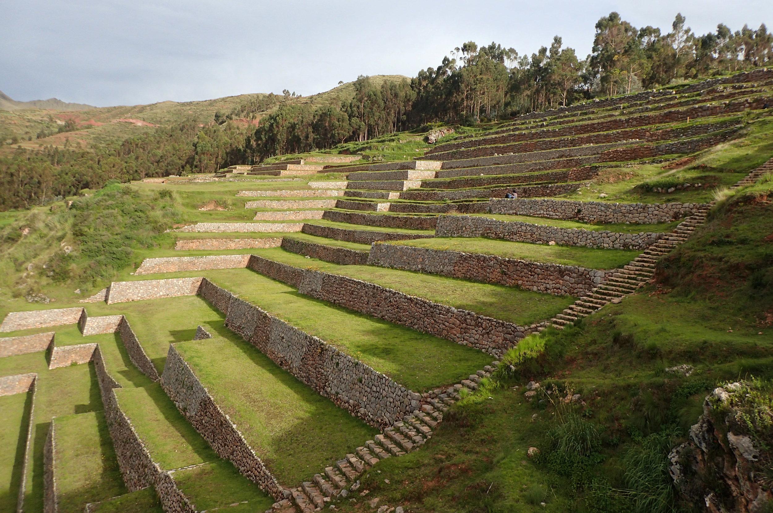 agricultural terraces.jpg
