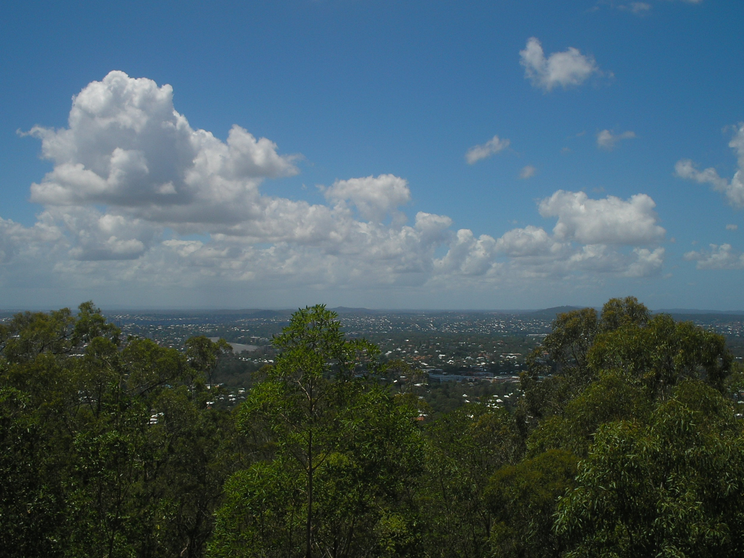 mt cootha lookout.JPG