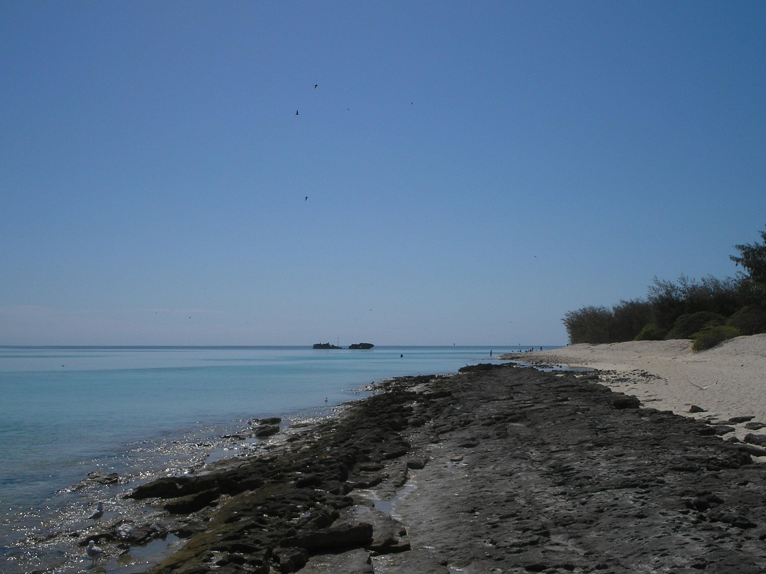 heron island 5.JPG