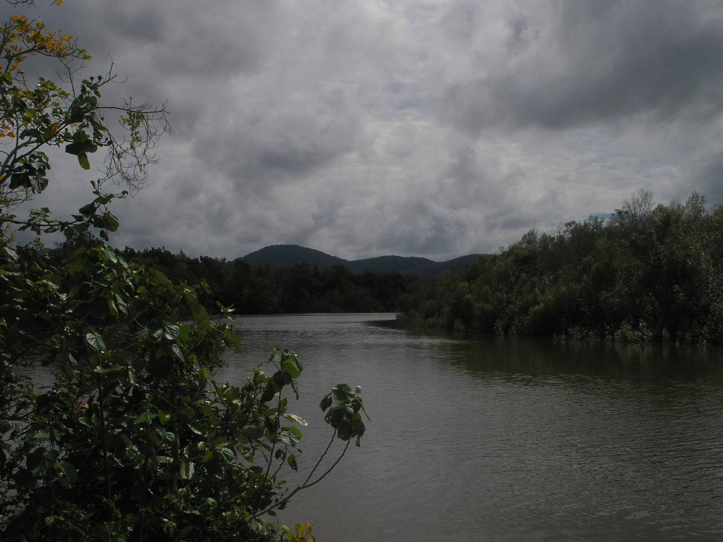 proserpine river.JPG