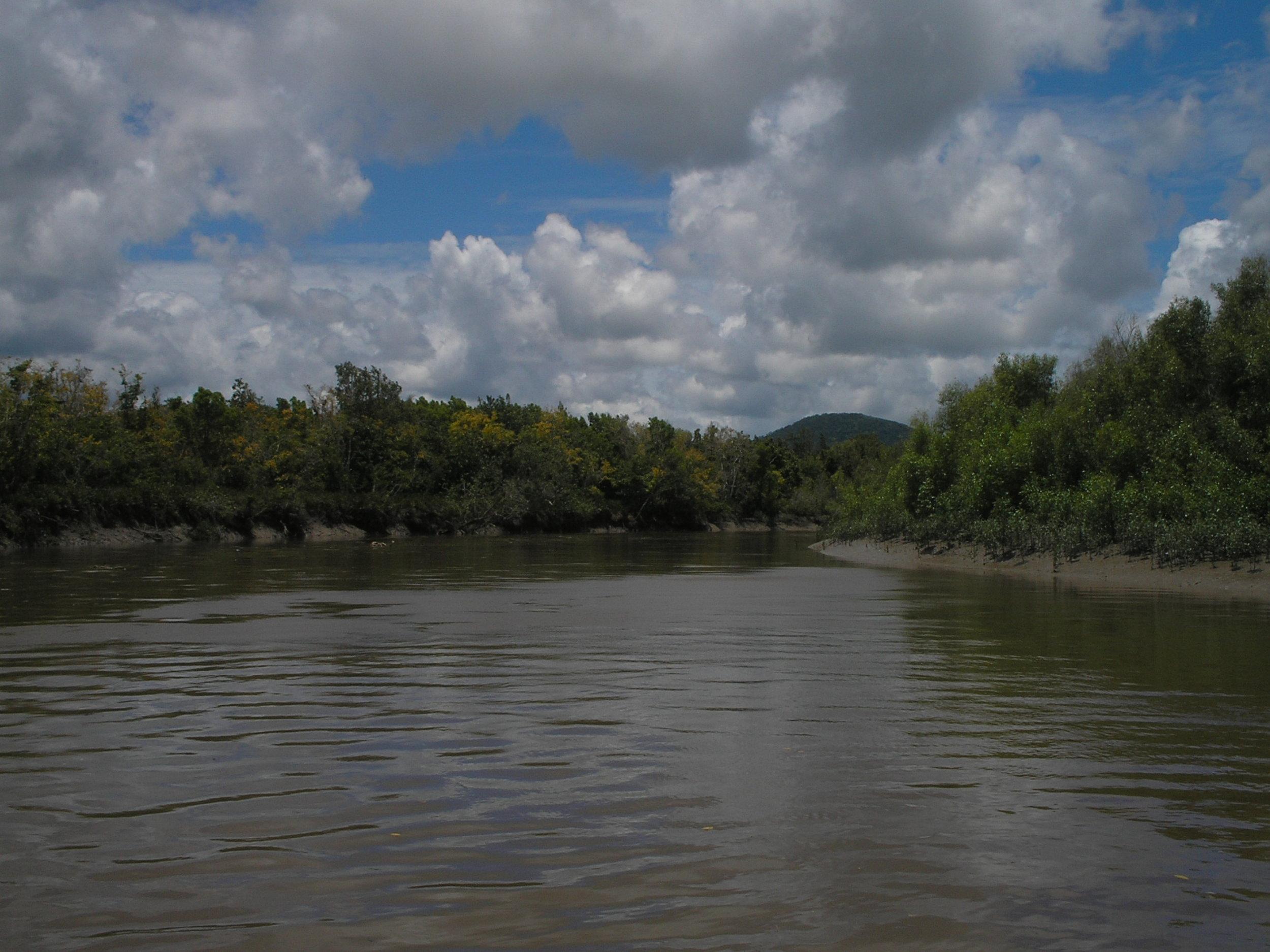 proserpine river 2.JPG