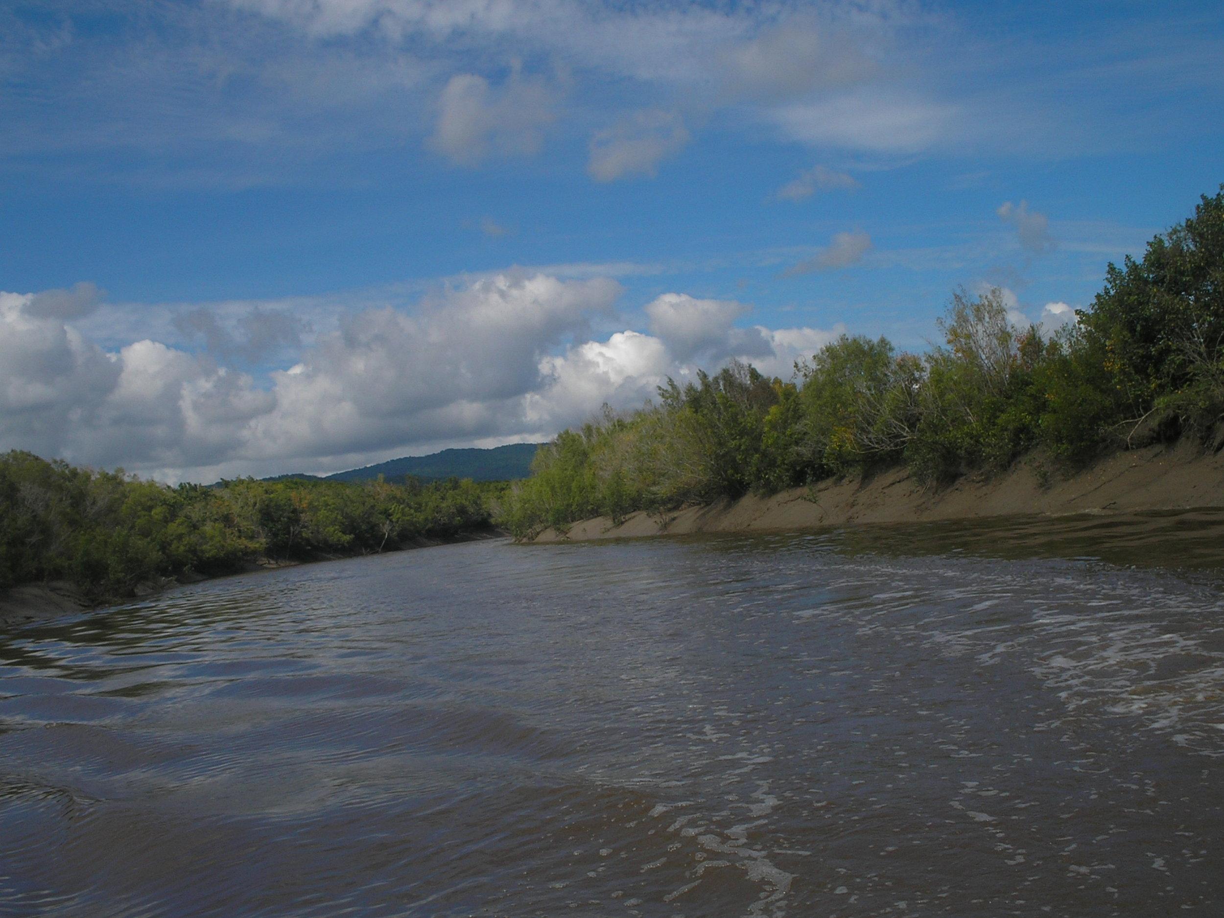 proserpine river 4.JPG