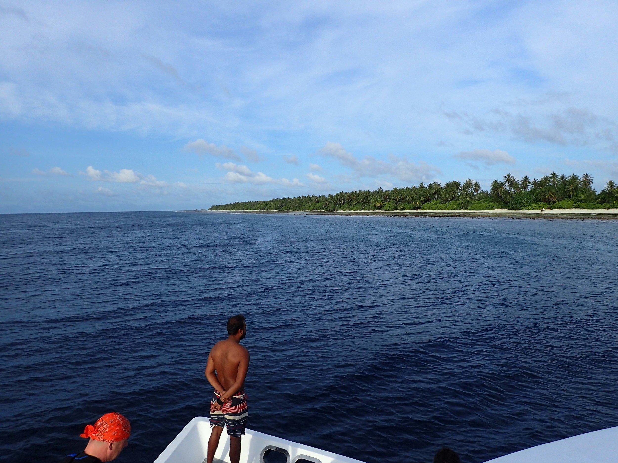 hunting for whale sharks.jpg